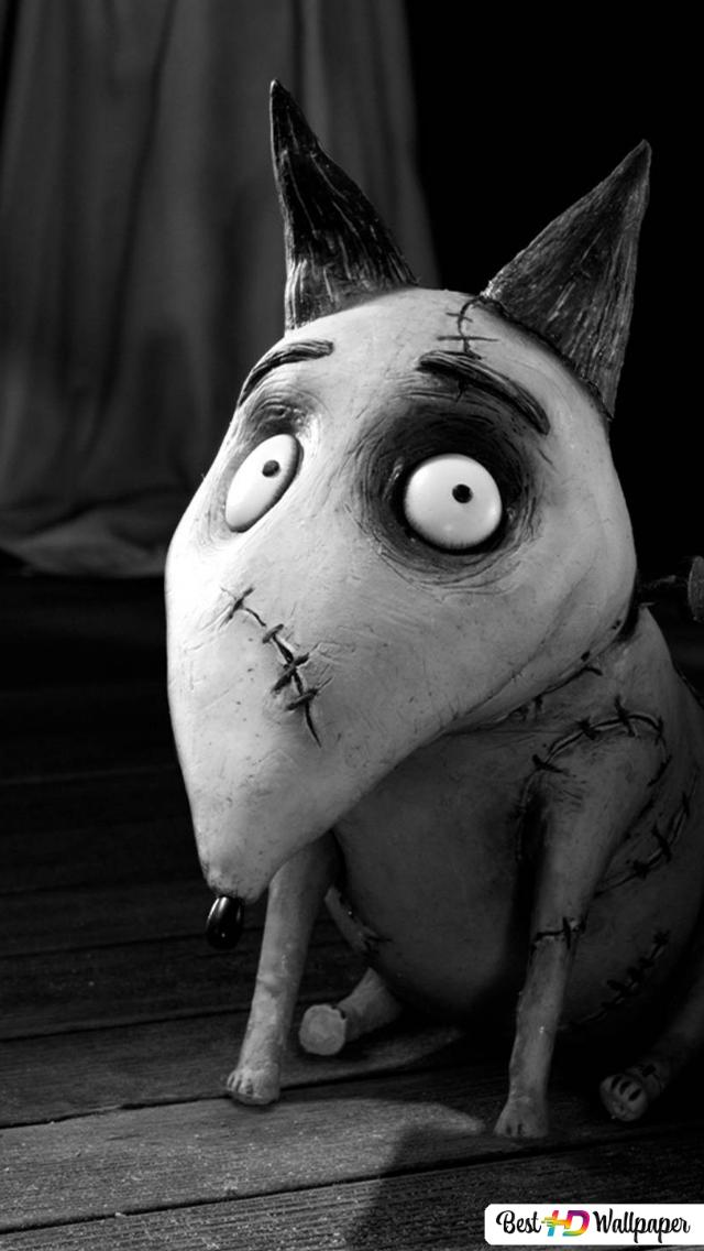 Frankenweenie Movie Hd Wallpaper Download