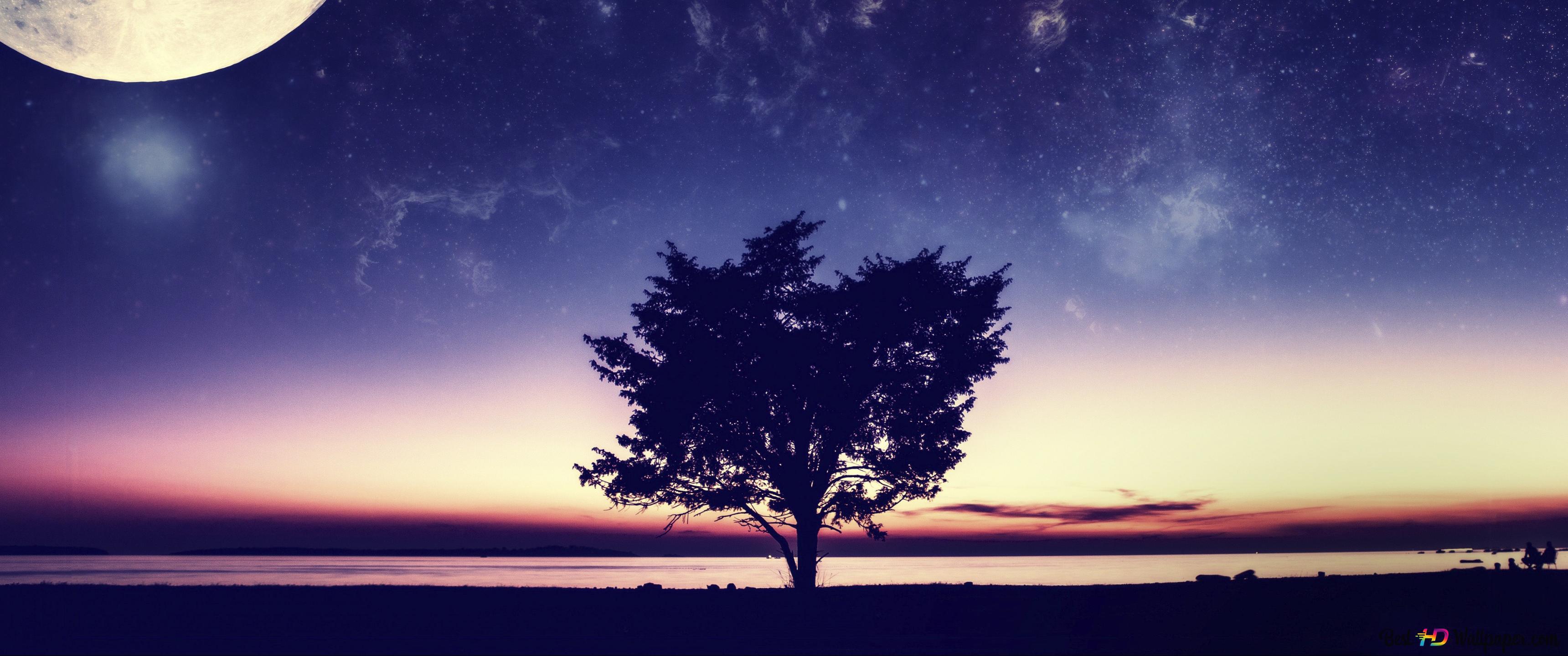 Full Moon Day 4k Download Di Sfondi Hd