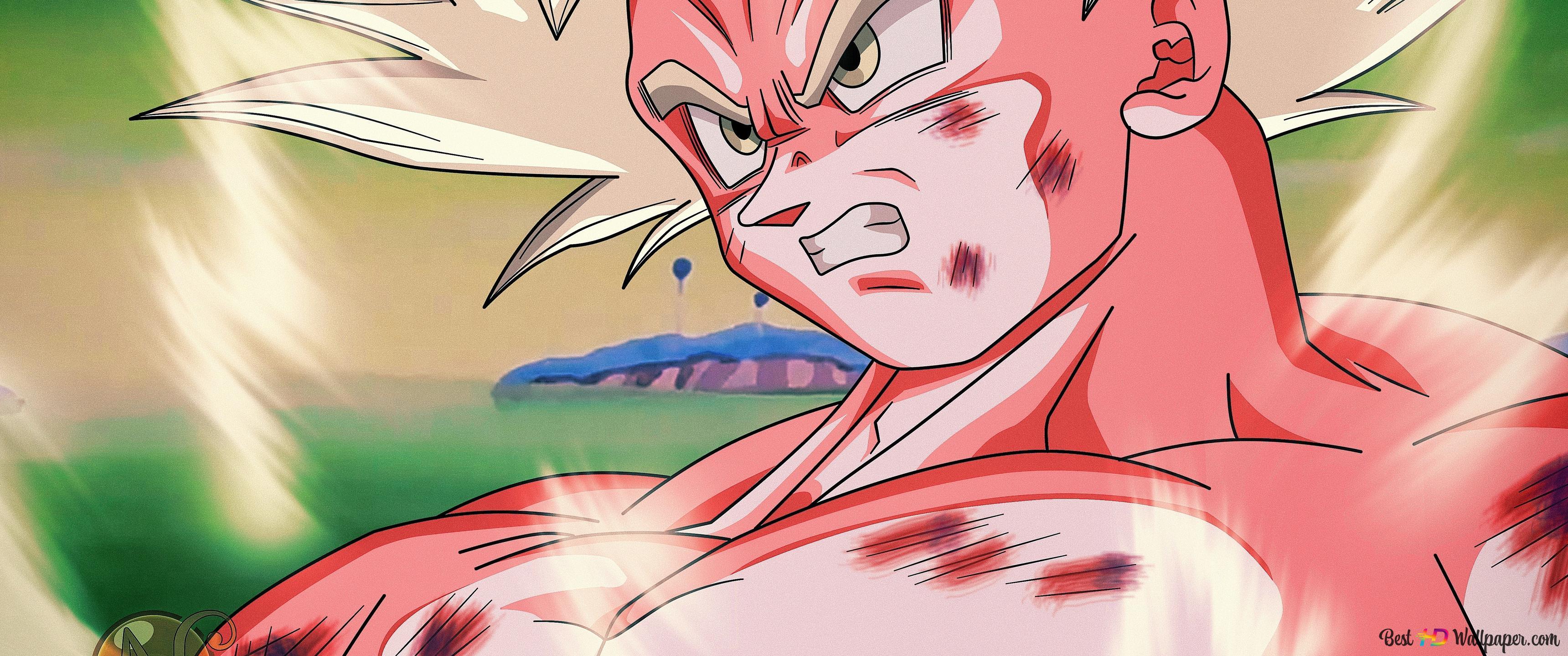 Goku Mastered Ultra Instinct Dragon Ball Z Style Hd Wallpaper Download