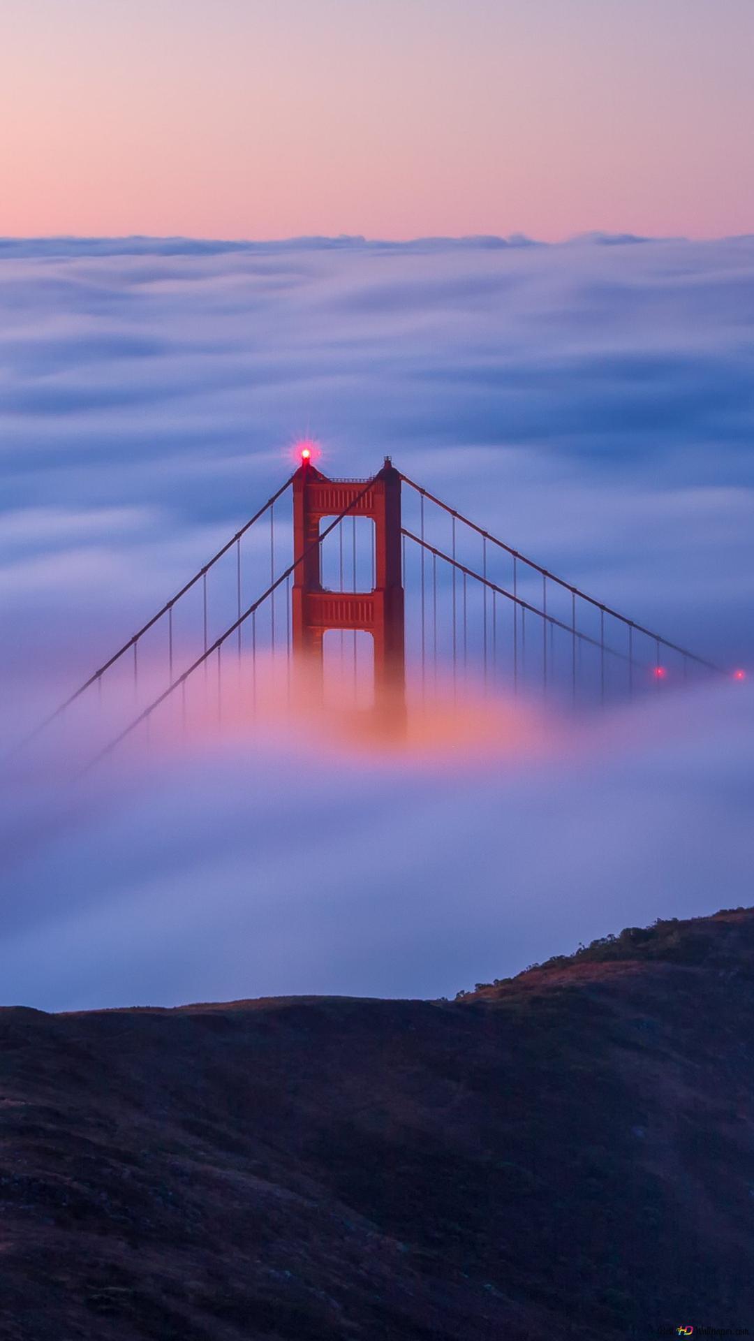 Golden Gate Bridge Over Clouds Hd Wallpaper Download