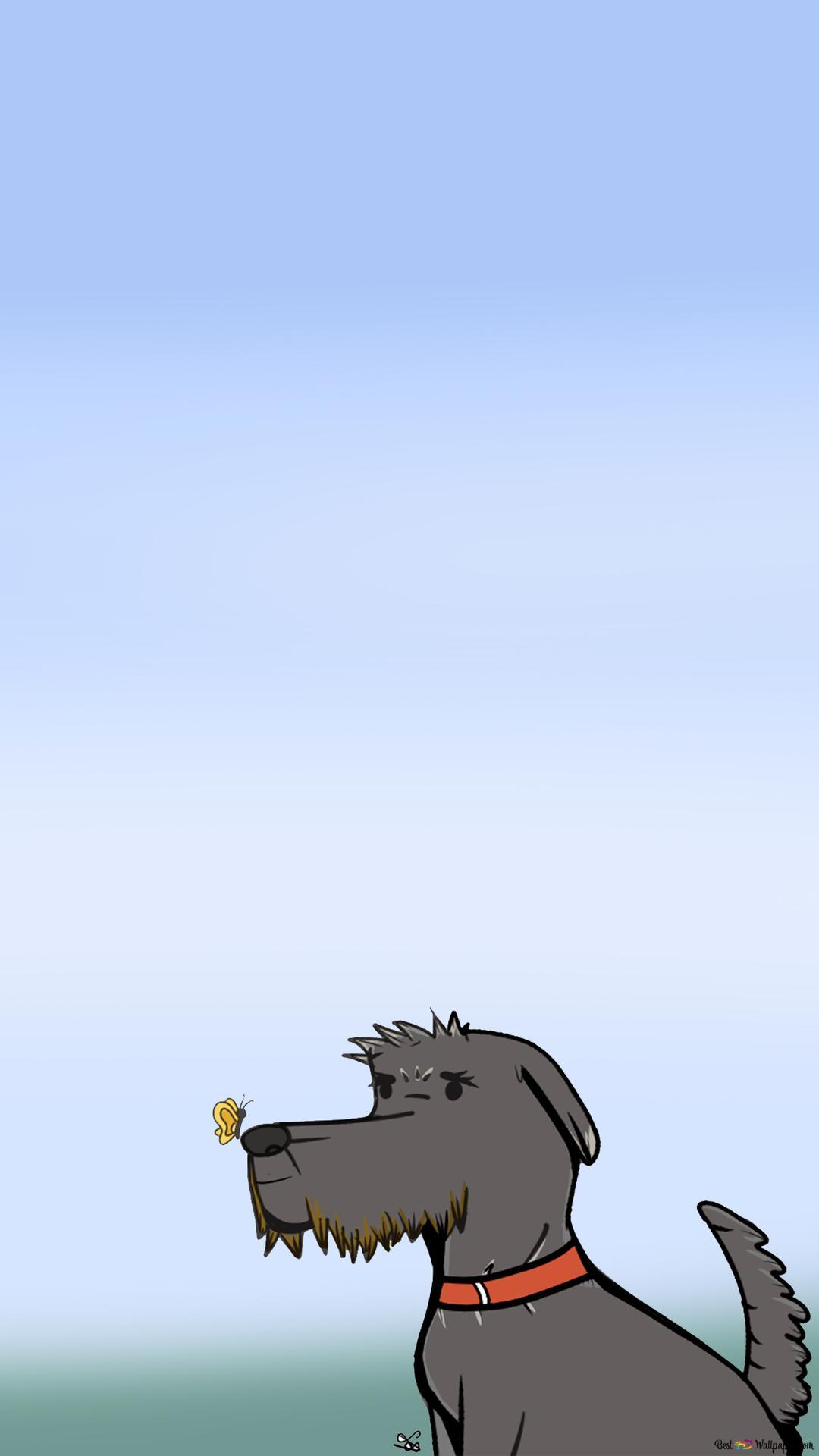 gray dog wallpaper 1080x1920 33619 165