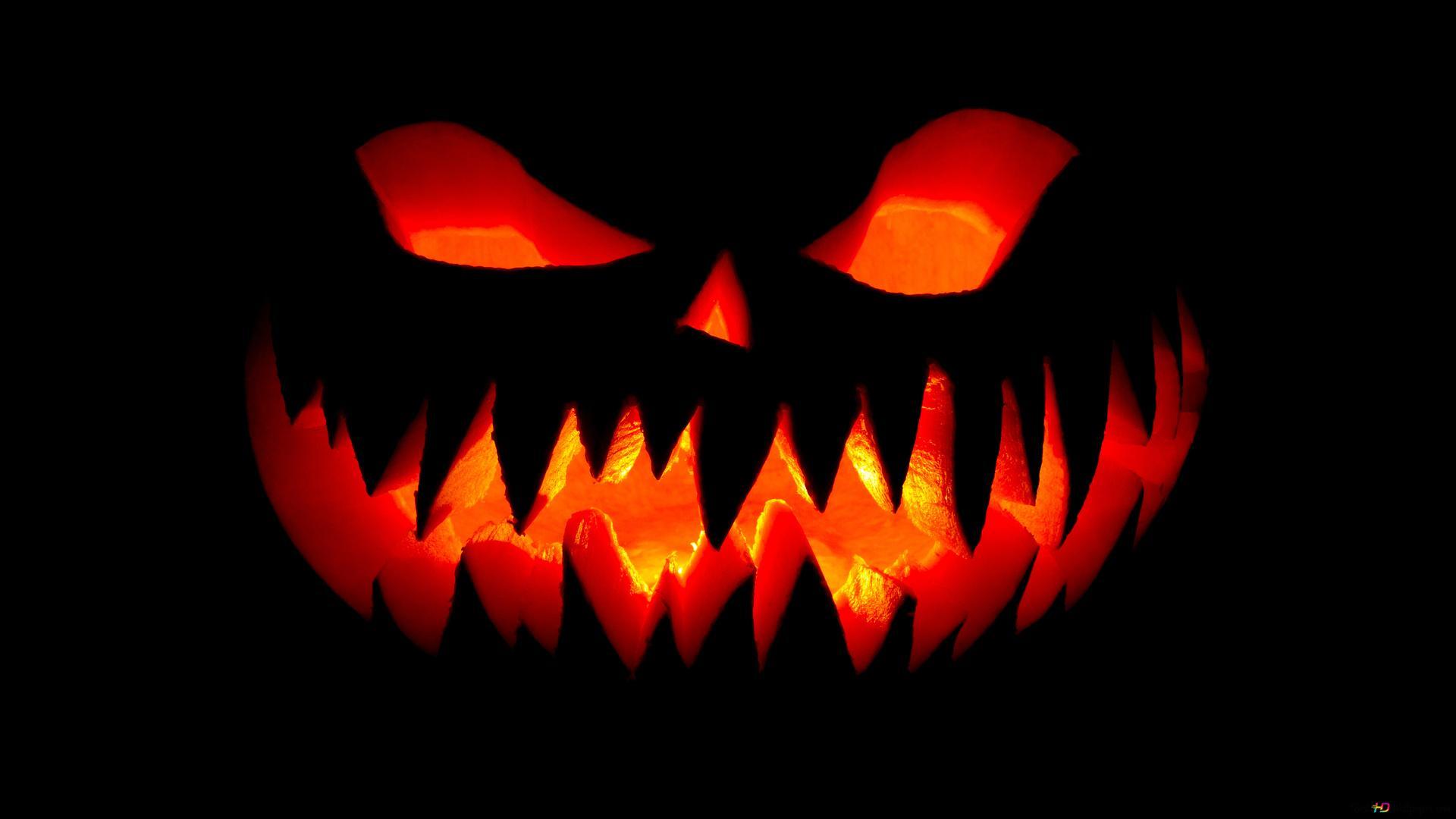 grin halloween wallpaper 1920x1080 28424 48
