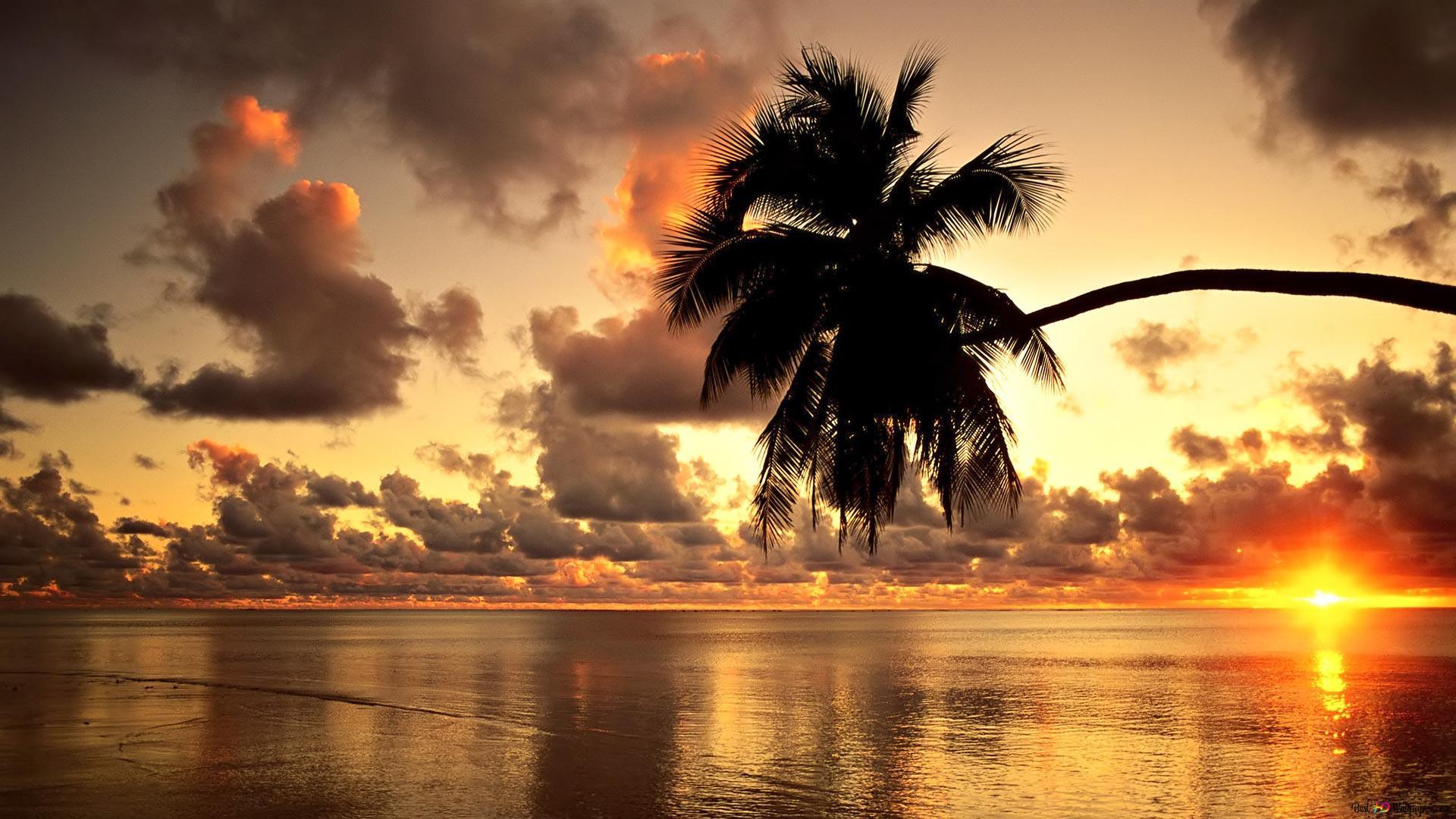 ハワイのビーチの夕日 Hd壁紙のダウンロード