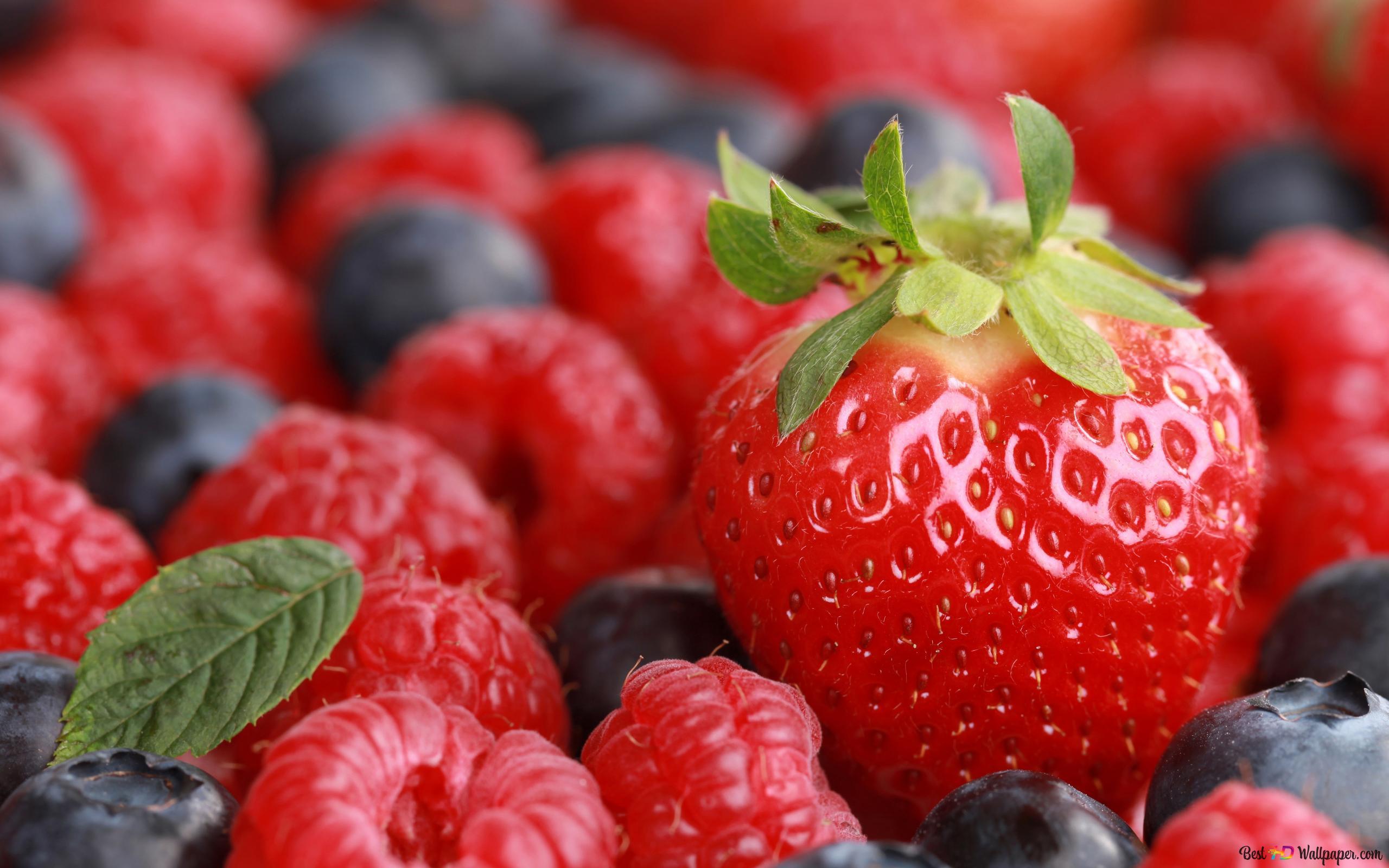 いちごとブルーベリーの果実 Hd壁紙のダウンロード