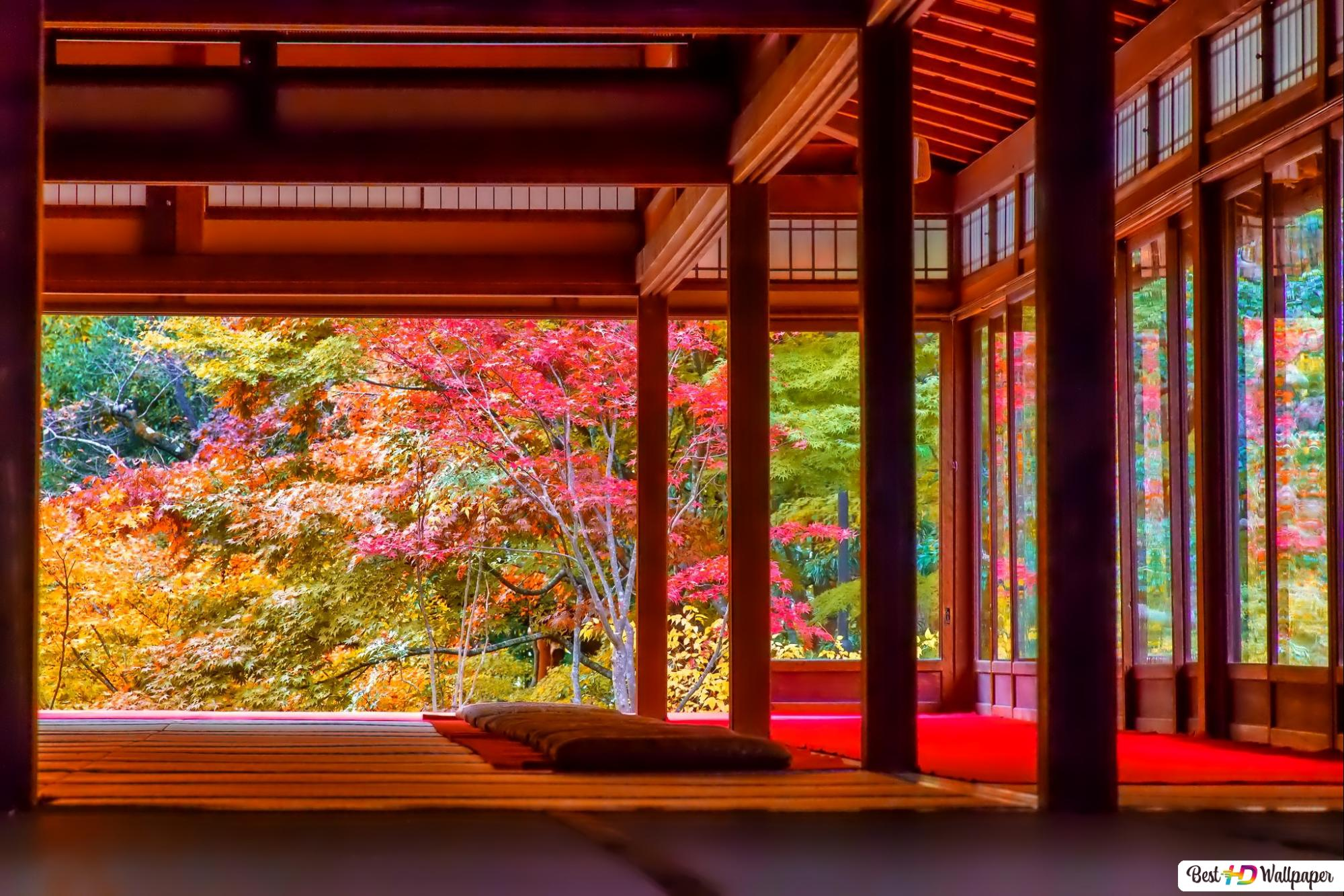 Japanese House in Autumn HD wallpaper ...