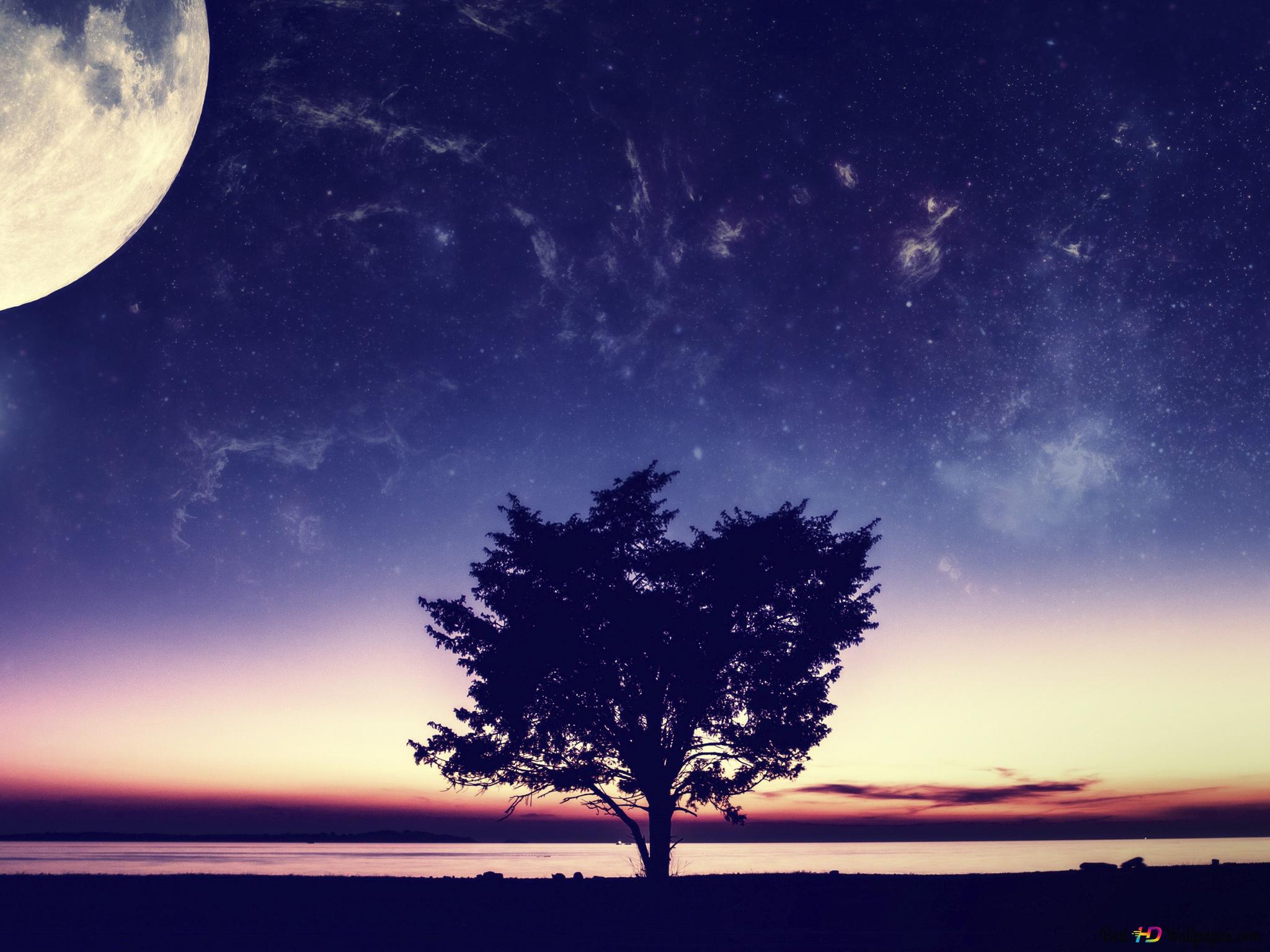 Jour Pleine Lune 4k Hd Fond Décran Télécharger
