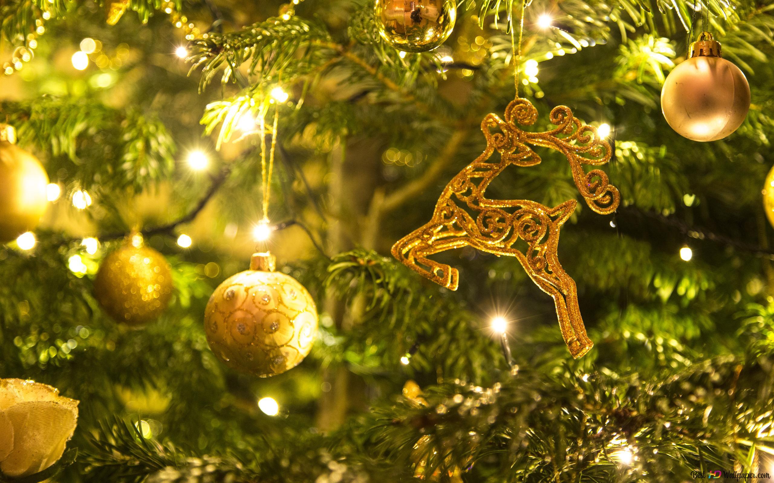 クリスマスツリー Hd壁紙のダウンロード