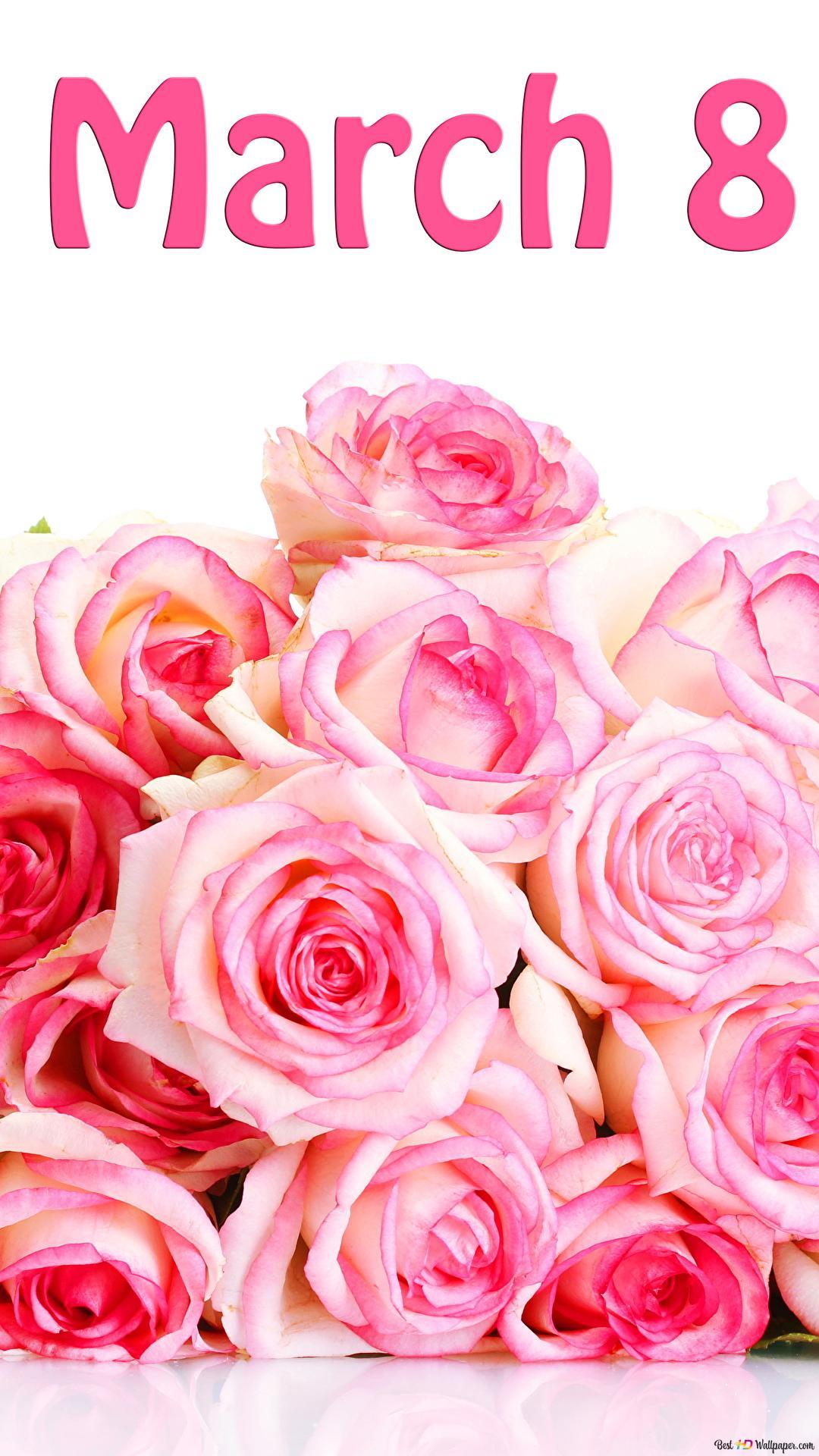 La Festa Della Donna Bouquet Di Rose Rosa Download Di Sfondi Hd