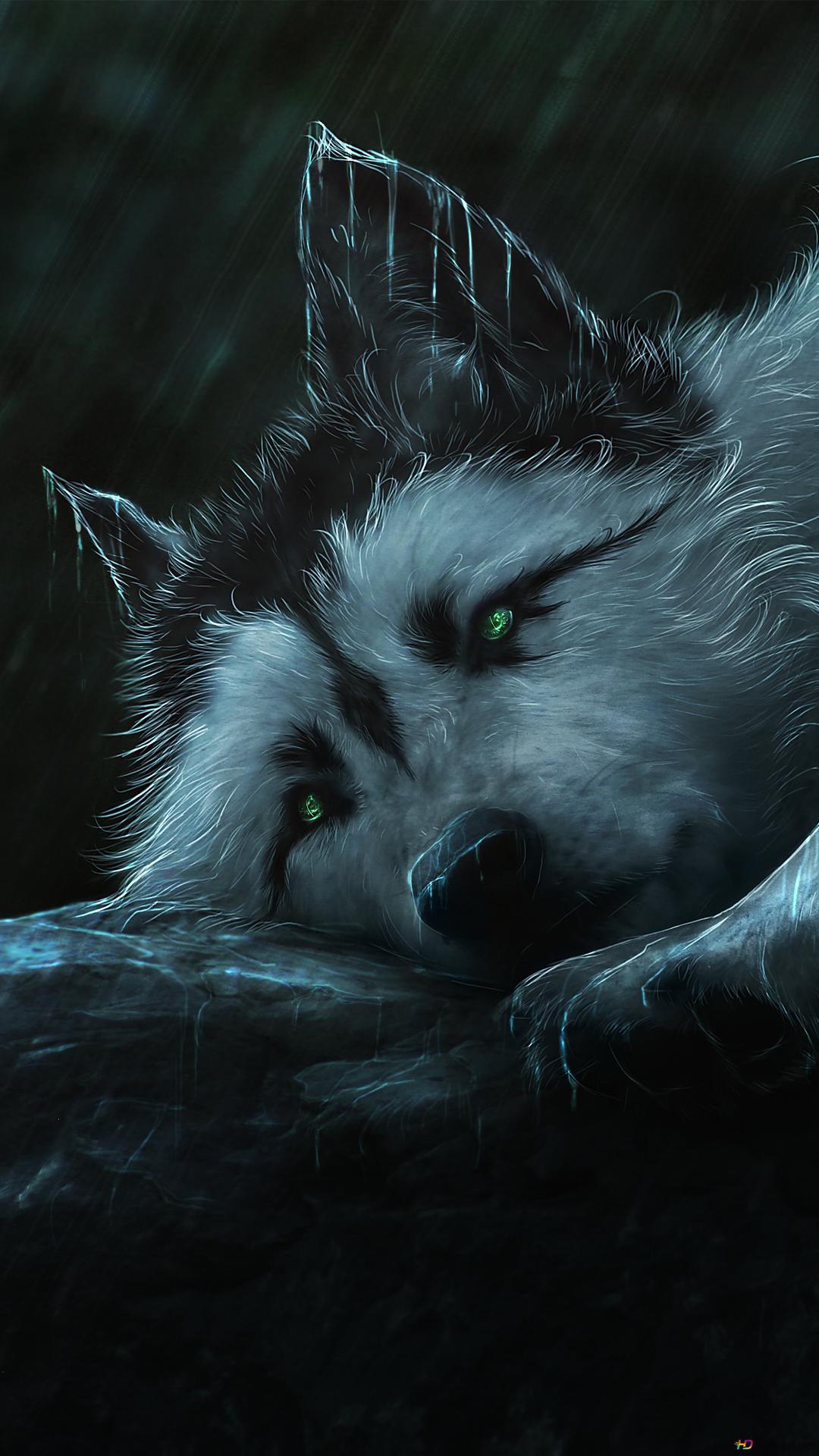 狼的繪畫高清壁紙下載