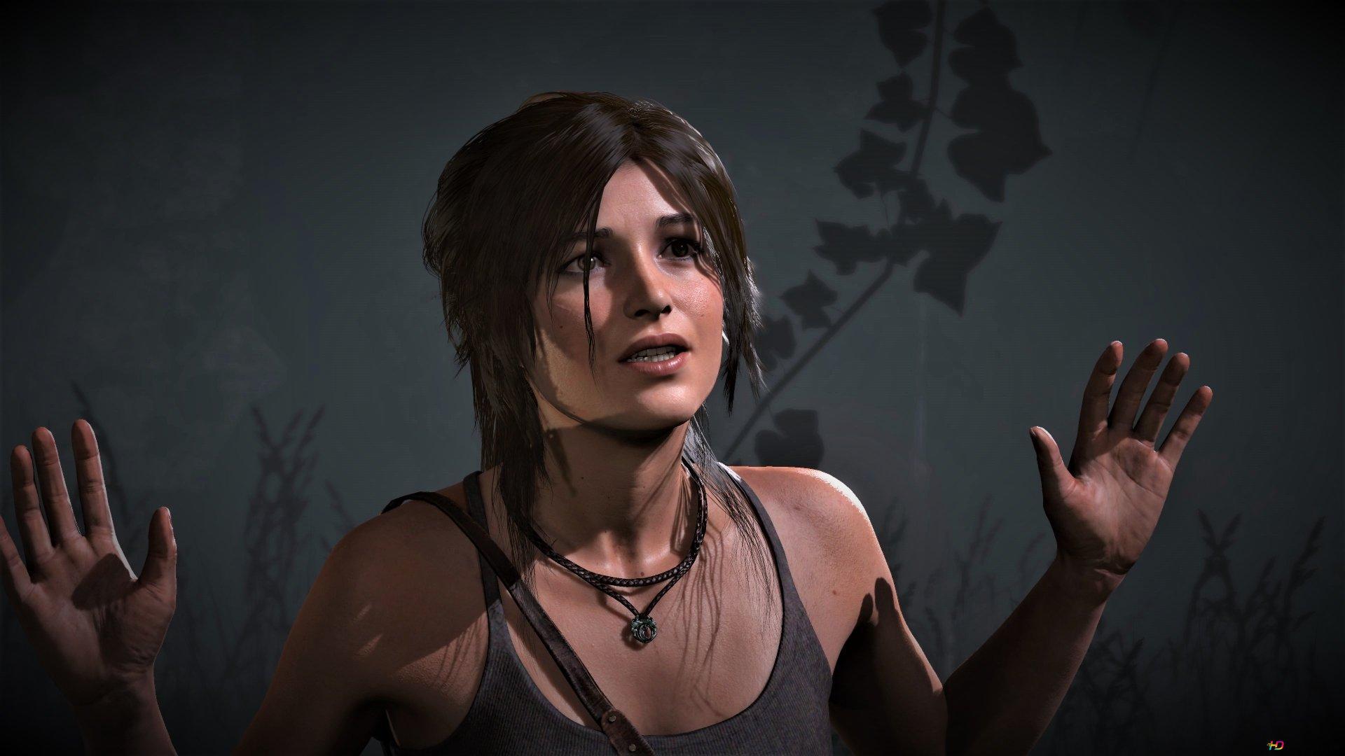 Lara Croft Rise Of The Tomb Raider Hd Wallpaper Download