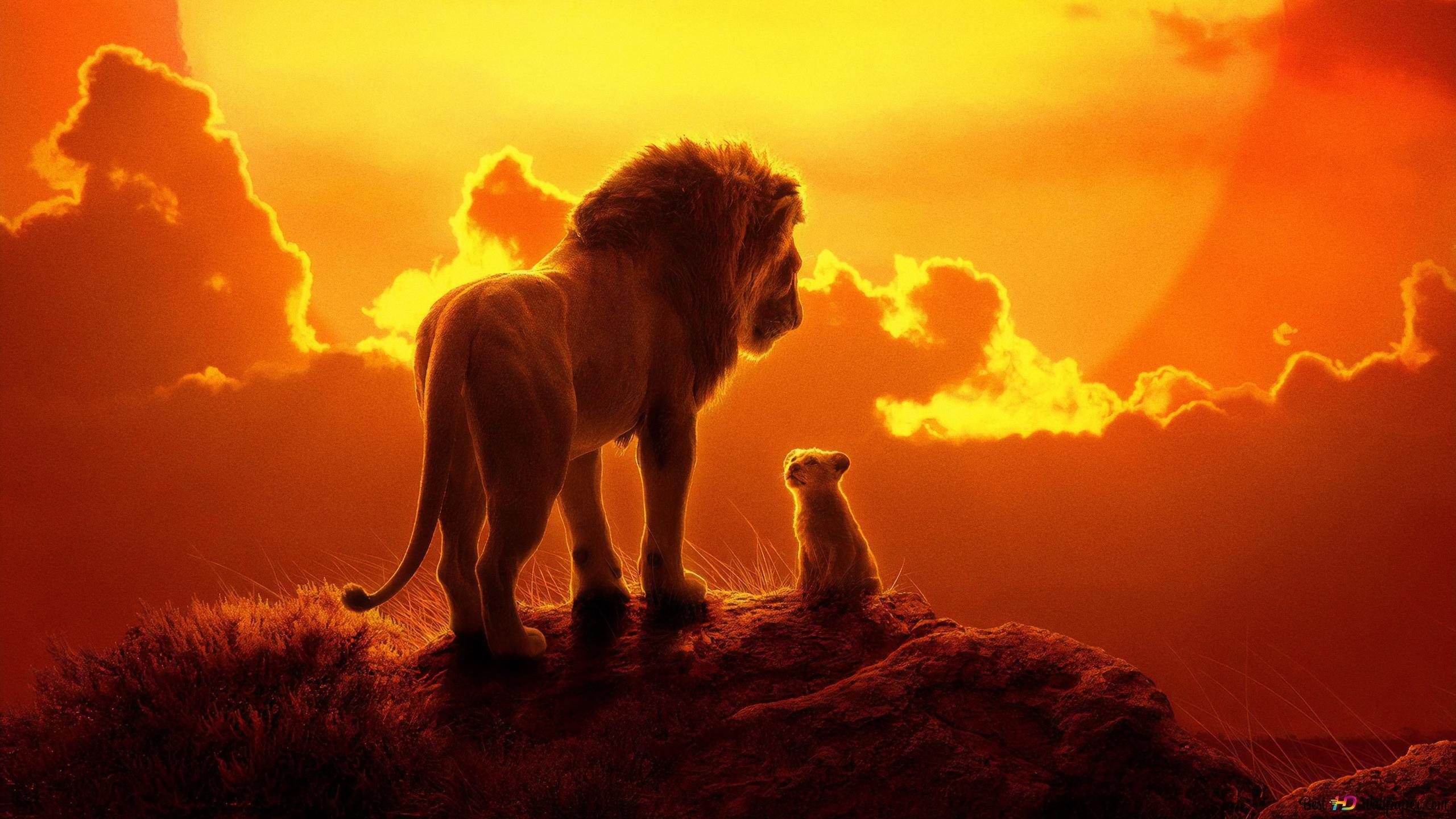 Le Roi Lion 2019 Hd Fond Décran Télécharger