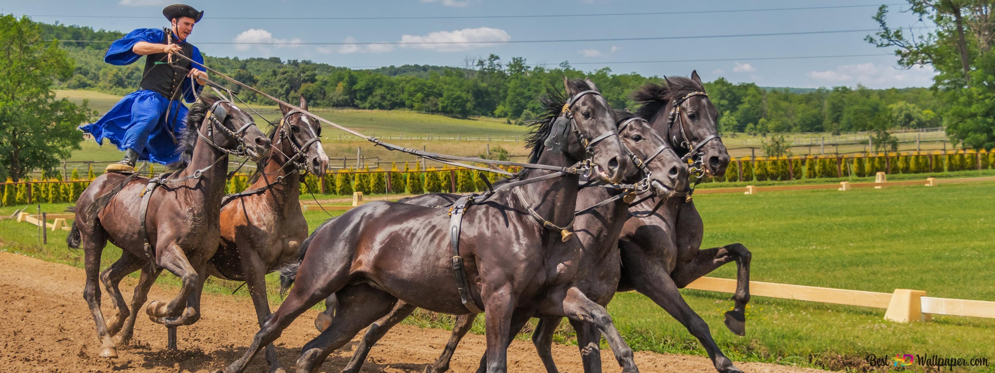 Lovas öt lovat aa496aef47