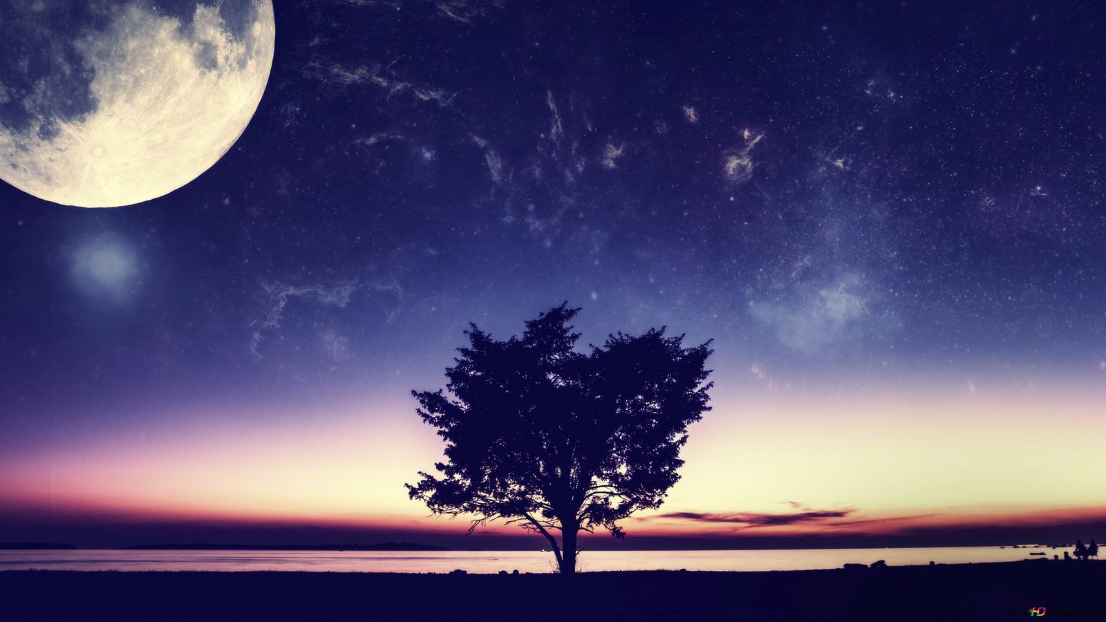 満月の日4k Hd壁紙のダウンロード
