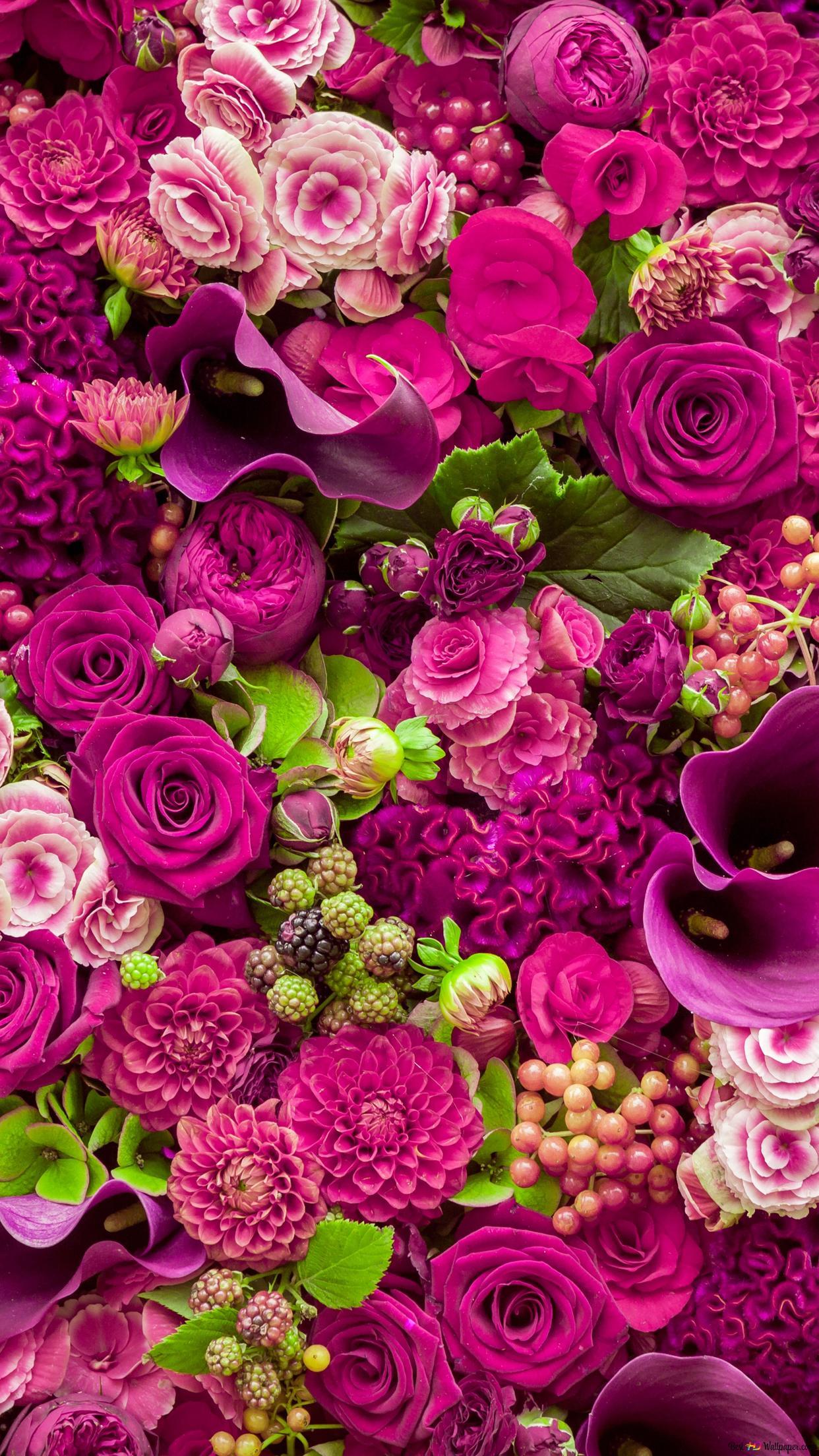 美しいピンクの花の束 Hd壁紙のダウンロード
