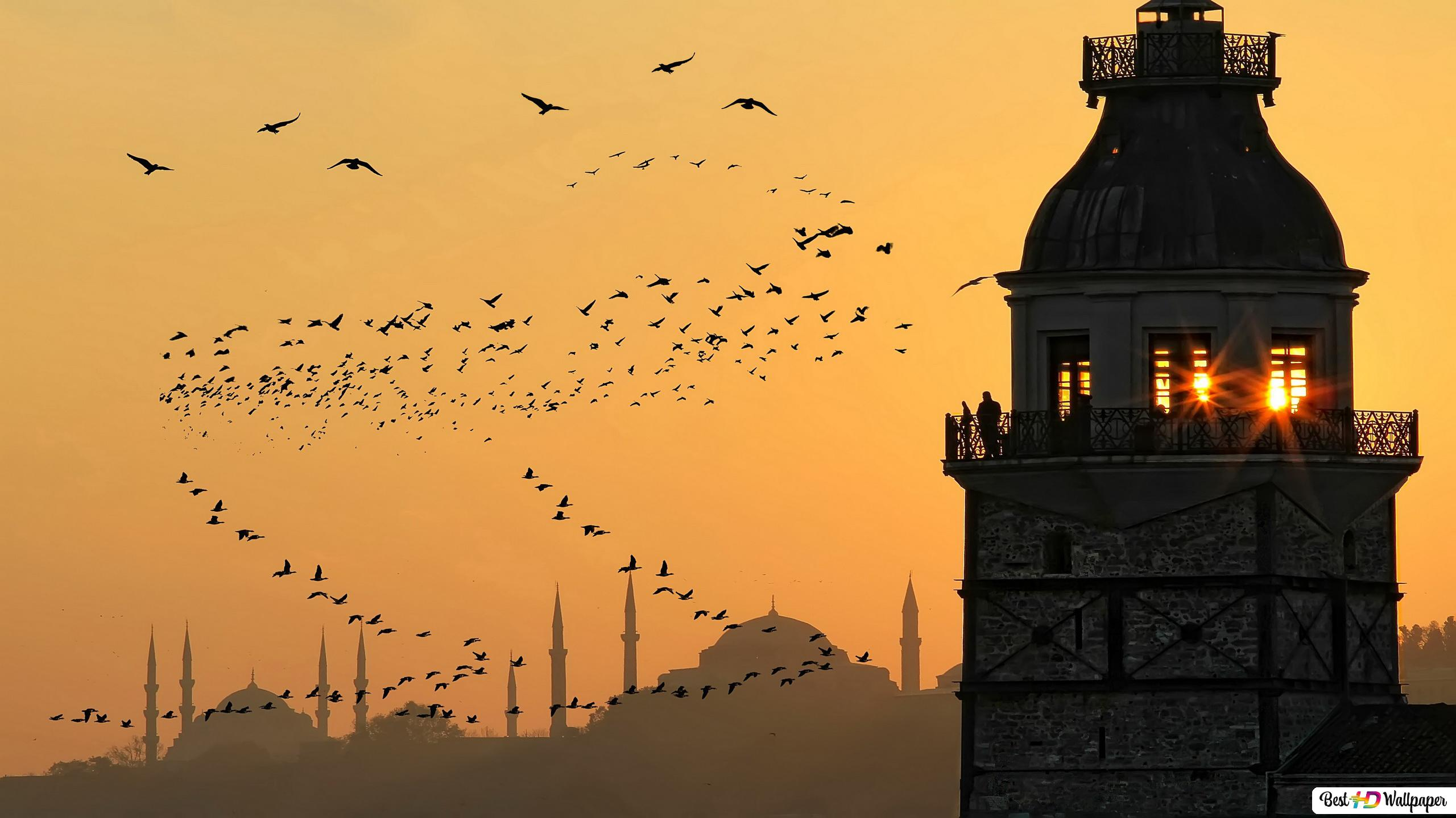 Menara Perawan Atau Kizkulesi Dalam Bahasa Turki Di Istanbul Fotografi Dengan Burung Dan Bayangan Masjid Biru Unduhan Wallpaper Hd