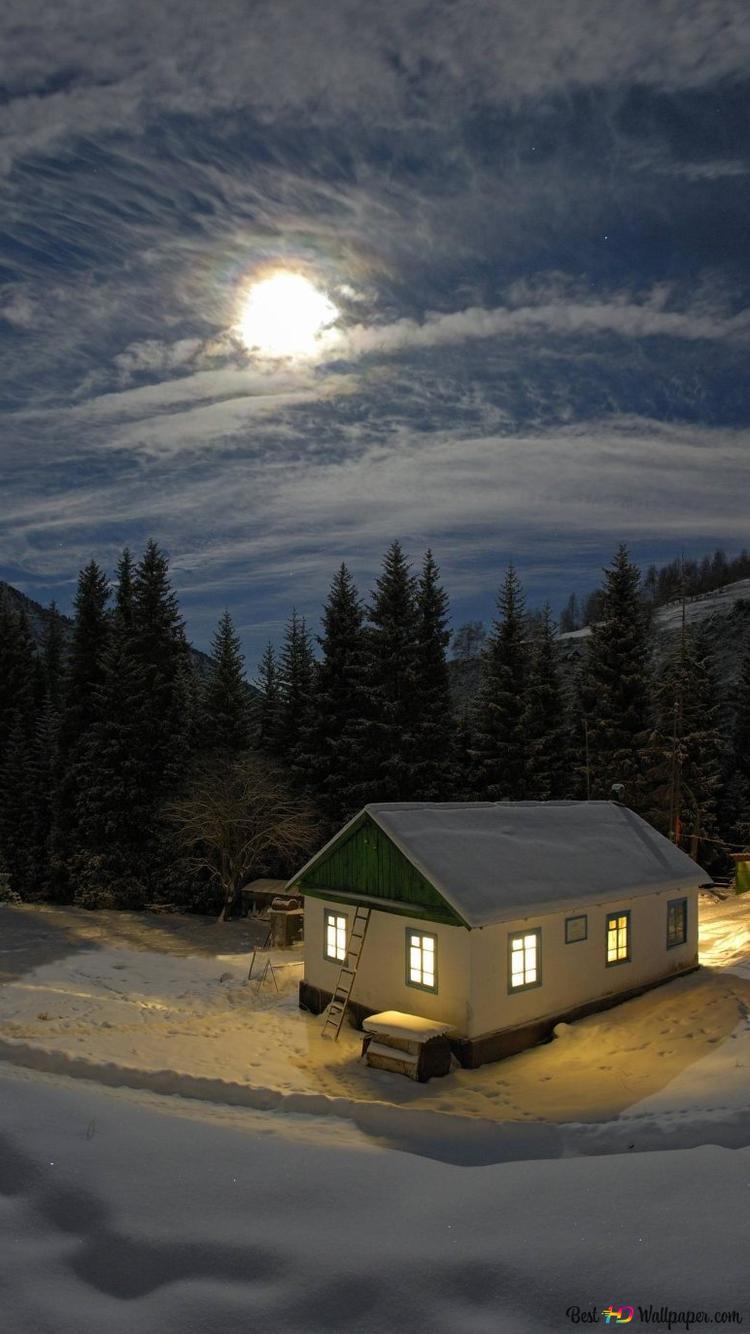 Moon Shines Bright At Winter Night Hd Wallpaper Download