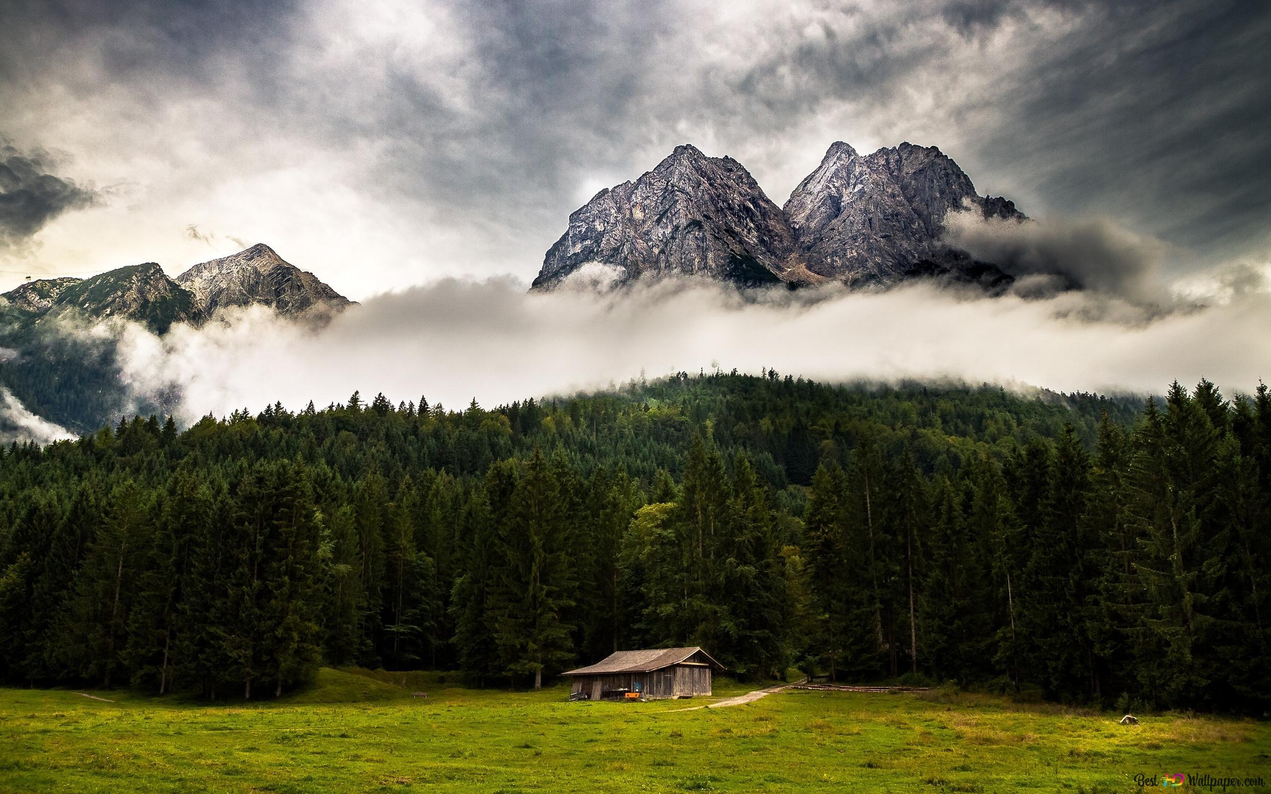 mounthと森の間雲 hd壁紙のダウンロード