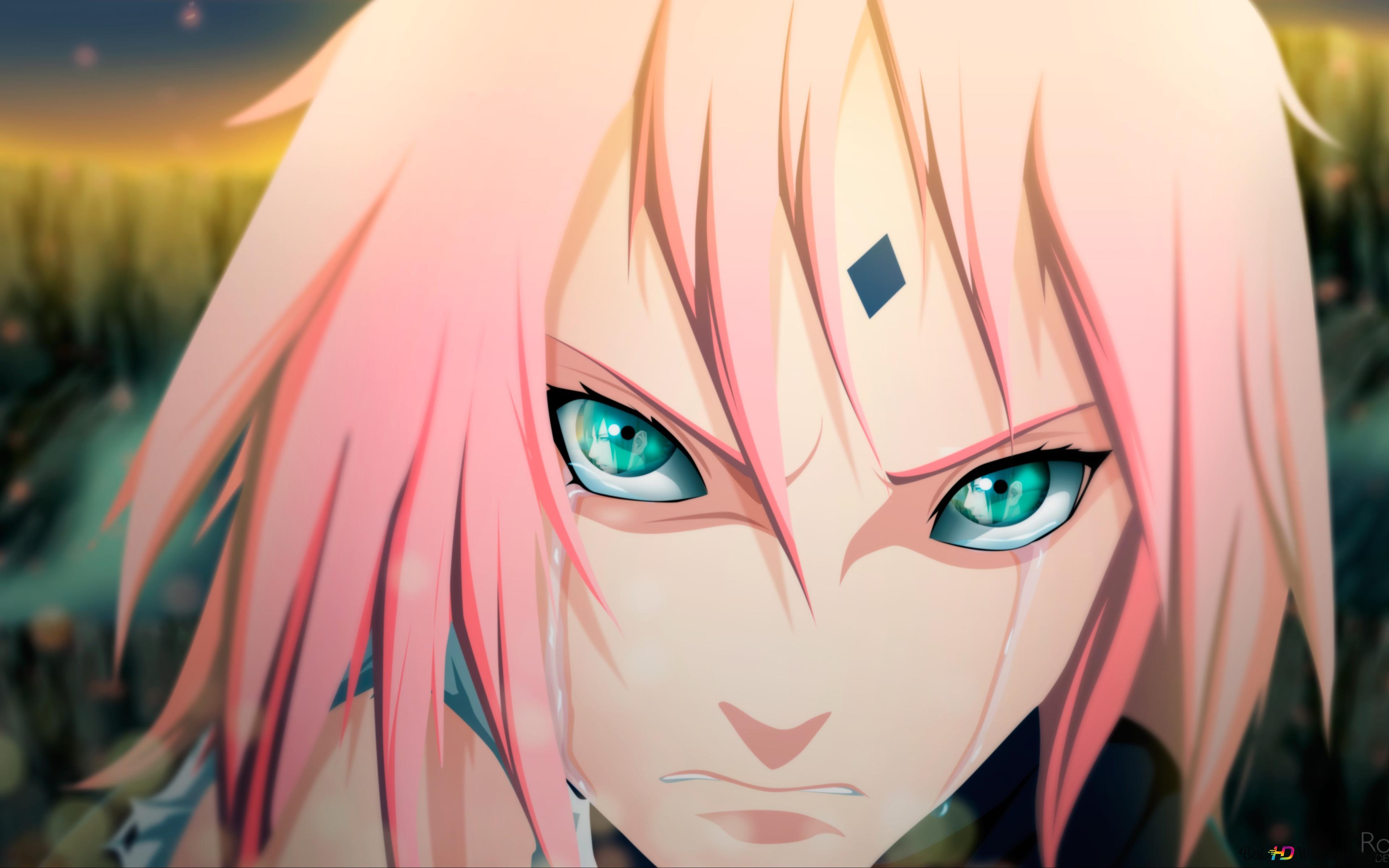 Naruto Shippuden Sakura Haruno Crying Hd Wallpaper Download
