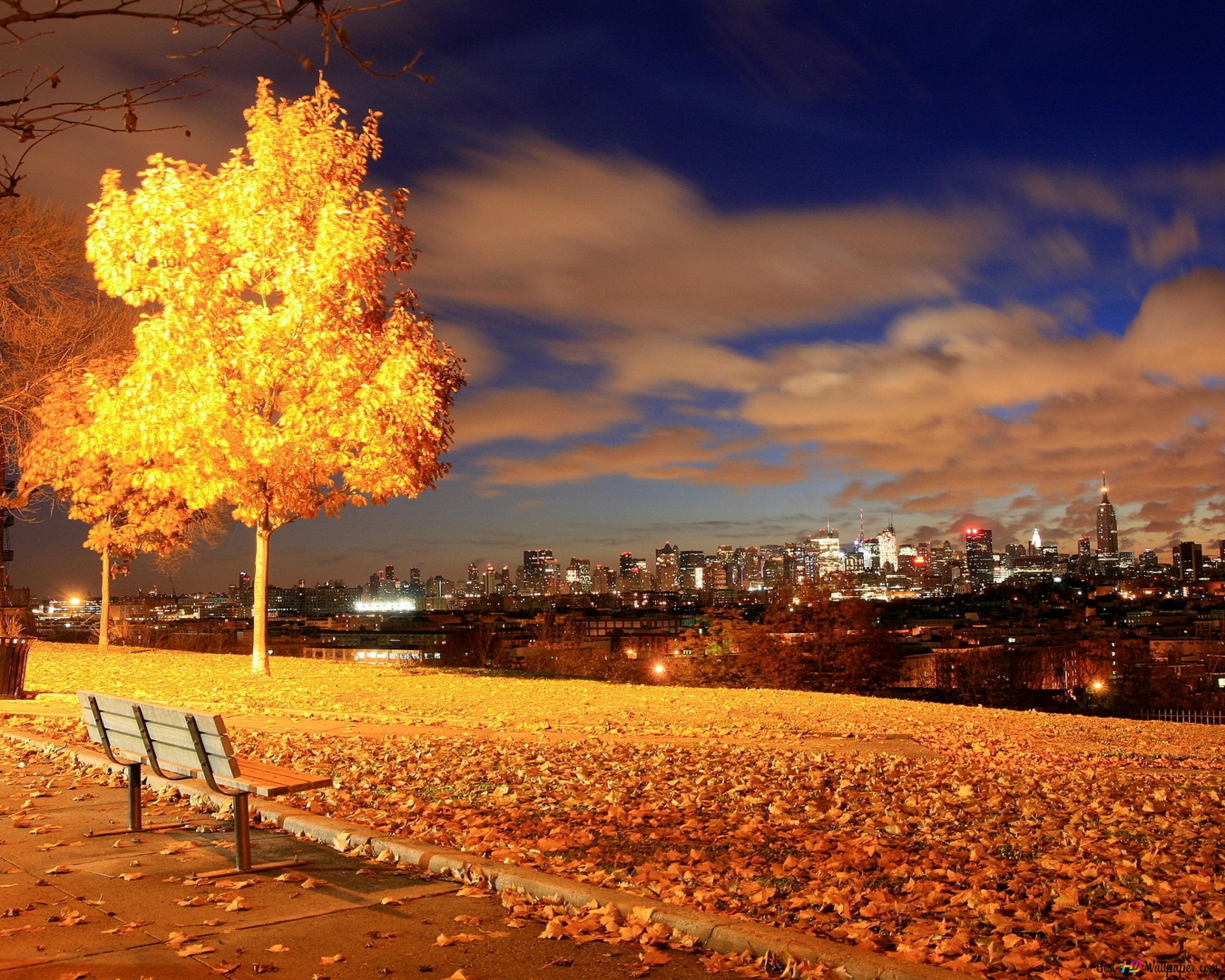 foto de Nature - chute d'automne HD fond d'écran télécharger