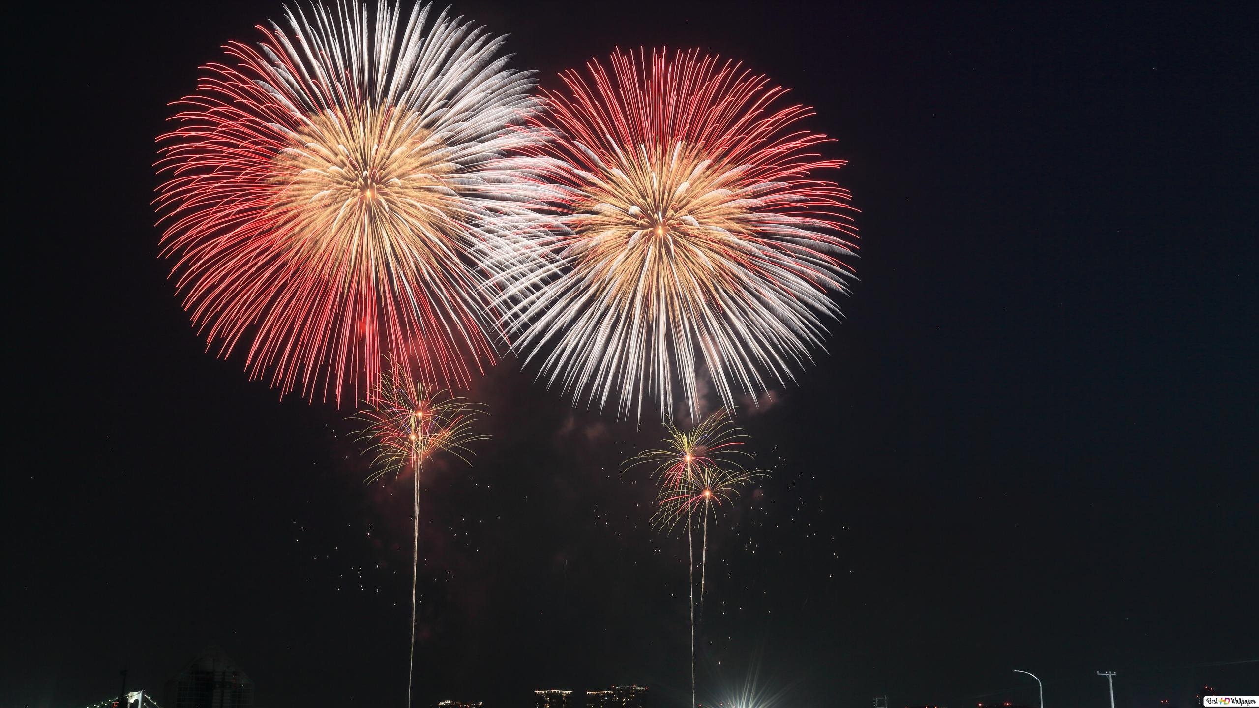 Night Fireworks HD Wallpaper Download
