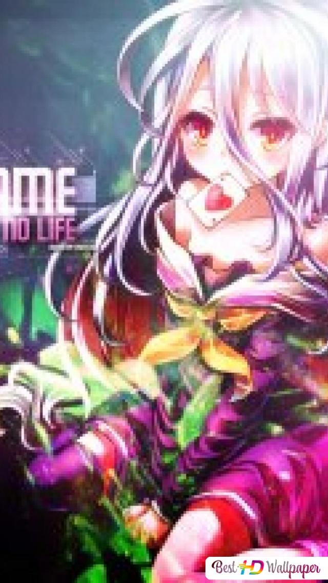 No Game No Life Shiroprotagonist Hd Wallpaper Download