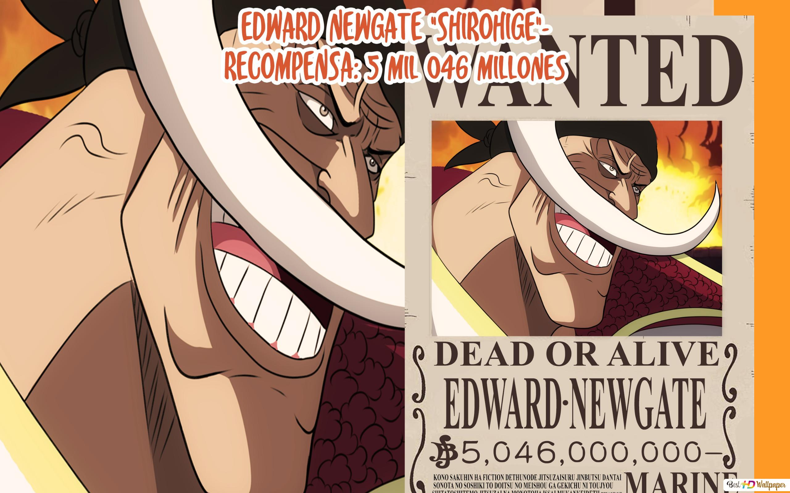 One Piece Edward Newgate Bounty Poster Hd Wallpaper Download