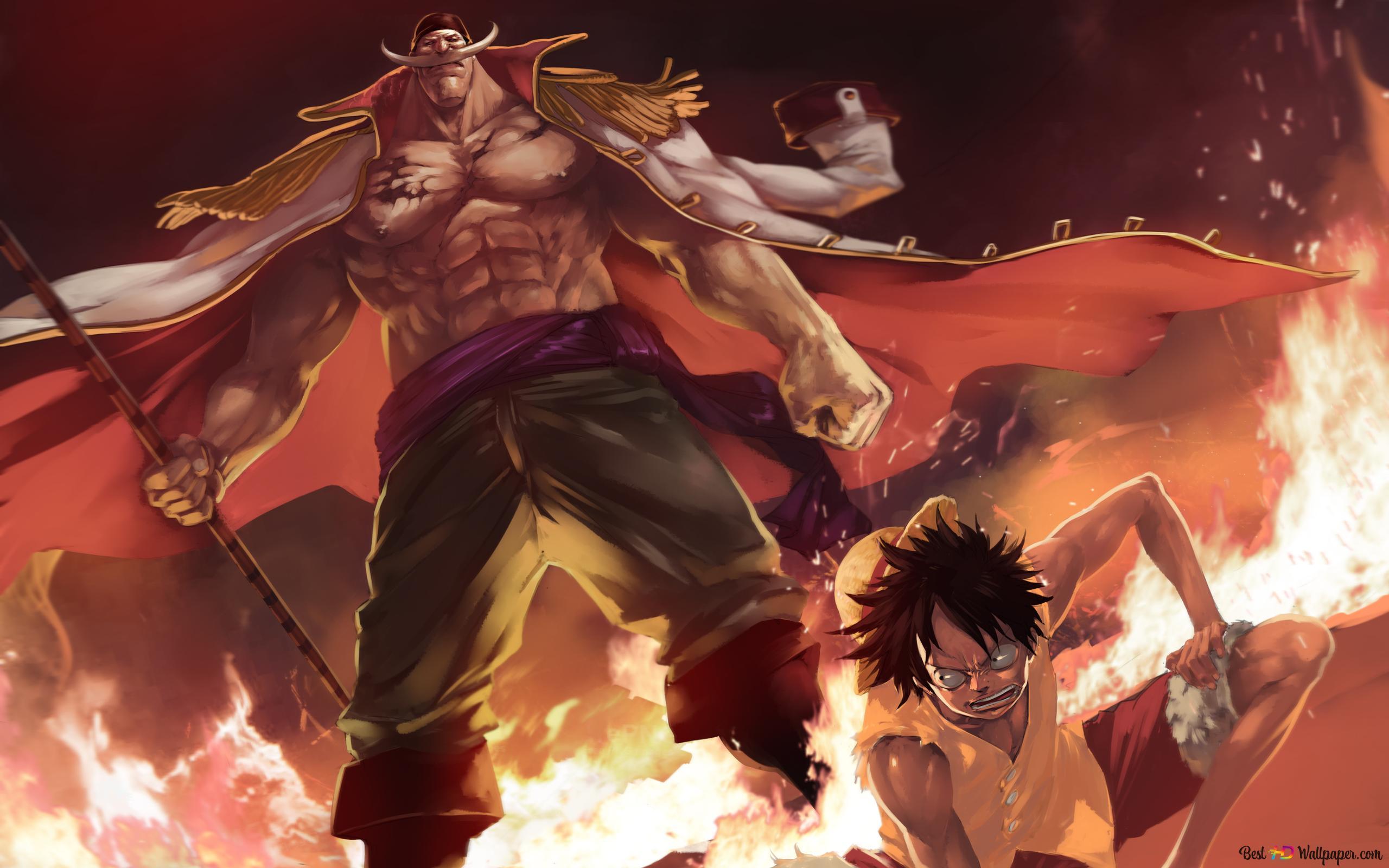 One Piece - Edward Newgate, Monkey D. Luffy, Blanchebarbe HD fond d'écran télécharger