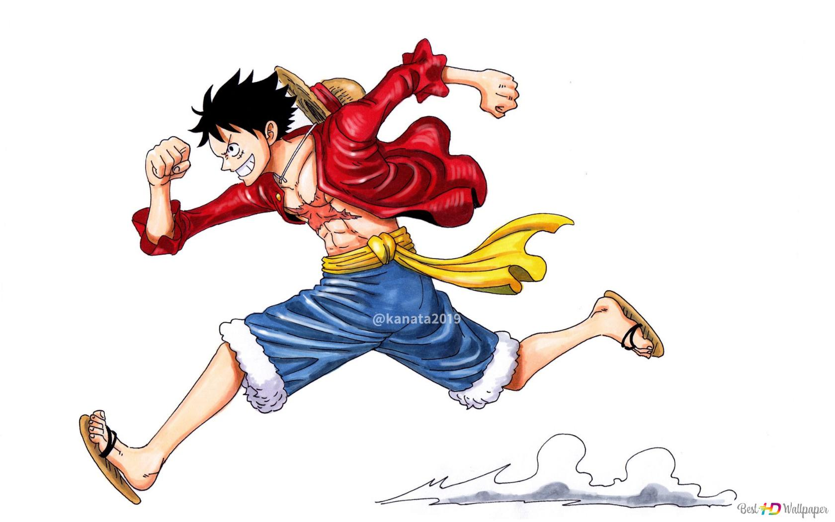 One Piece Monkey D Luffy Future Pirate King Hd Wallpaper