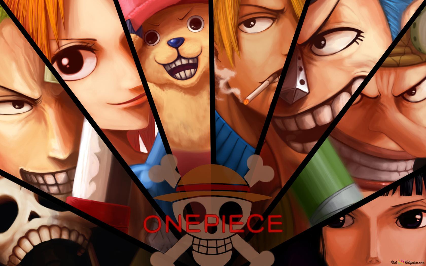 One Piece Monkey D Luffy Zoro Roronoa Usopp Sanji