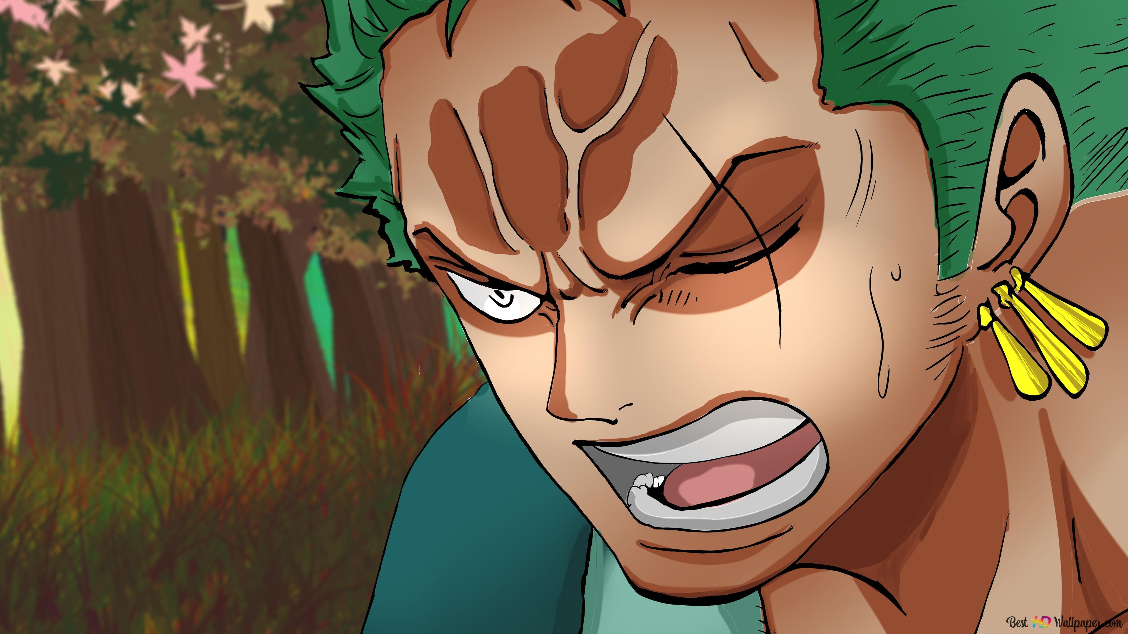 One Piece Roronoa Zoro Wano Kuni Arc Hd Wallpaper Download