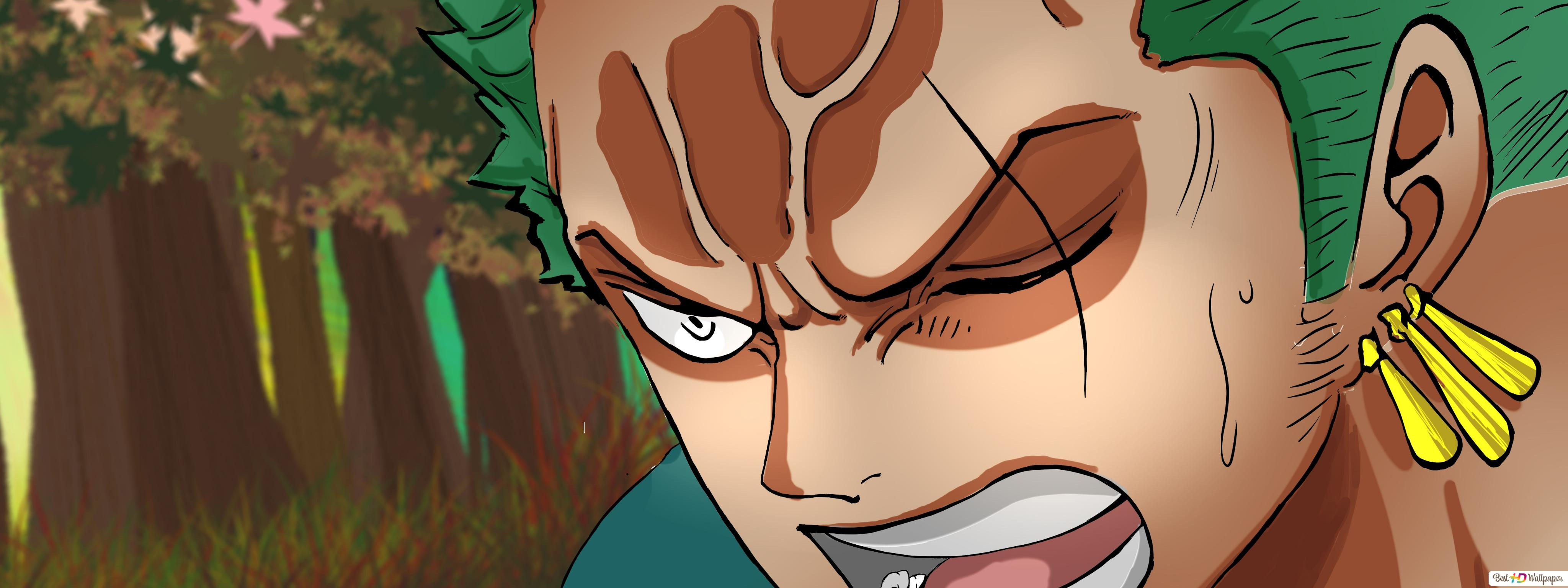One Piece Roronoa Zoro Wano Kuni Arc Hd Wallpaper Download