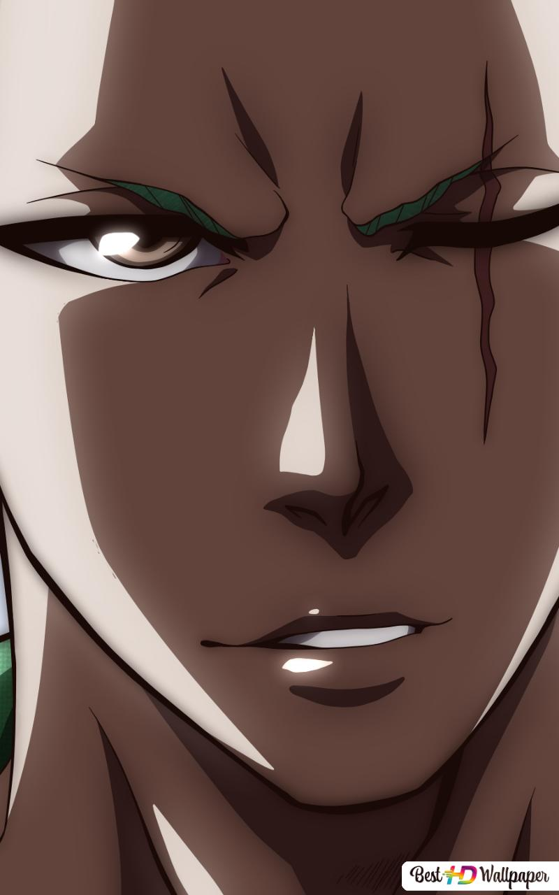 One Piece Roronoa Zoro Wano Kuni Samurai Arc Hd Wallpaper Download