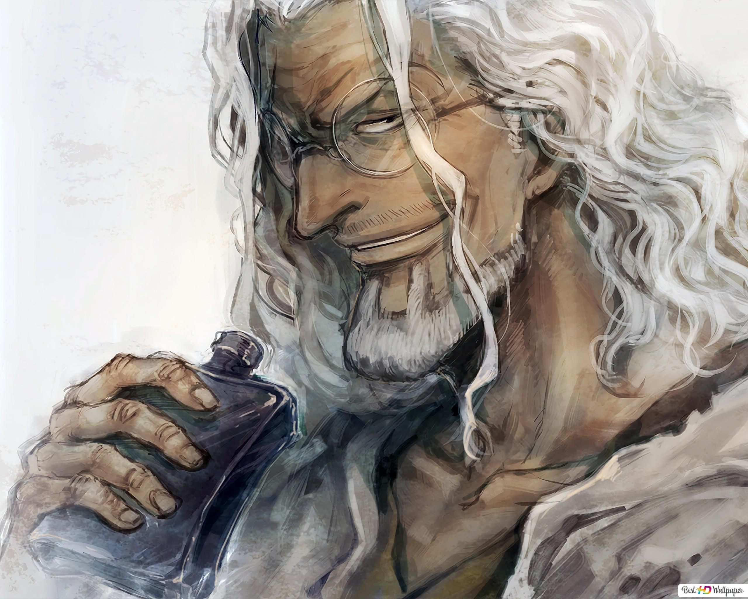 One Piece Silvers Rayleigh Hd Wallpaper Download