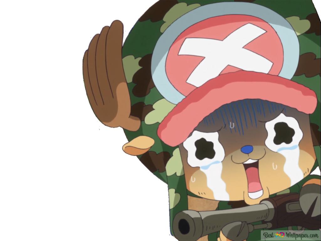 One Piece Tony Tony Chopper Hd Wallpaper Download