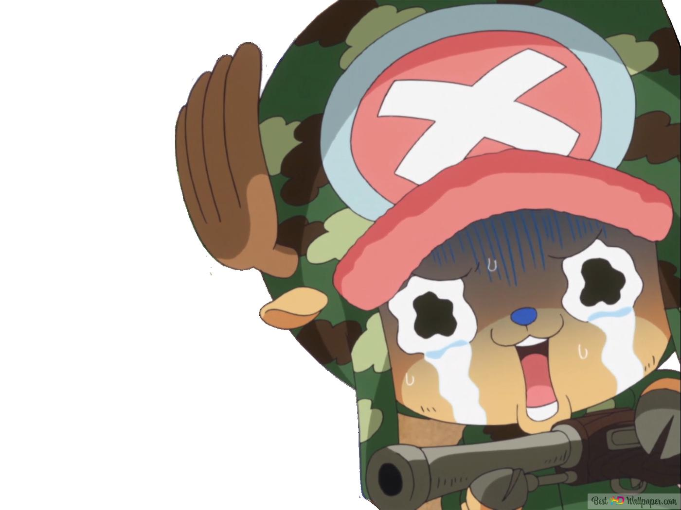 One Piece Tony Tony Chopper Unduhan Wallpaper Hd
