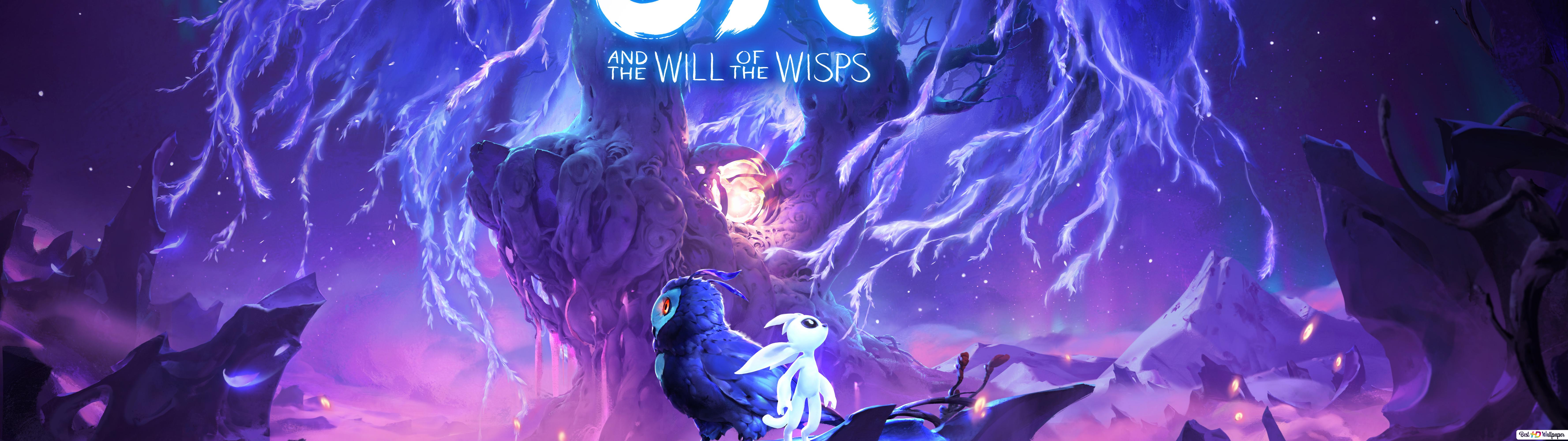Ori And The Will Of The Wisps Video Game Hd Wallpaper Download