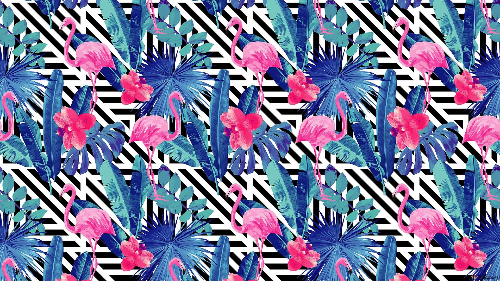 Pink Flamingo Pattern Hd Wallpaper Download