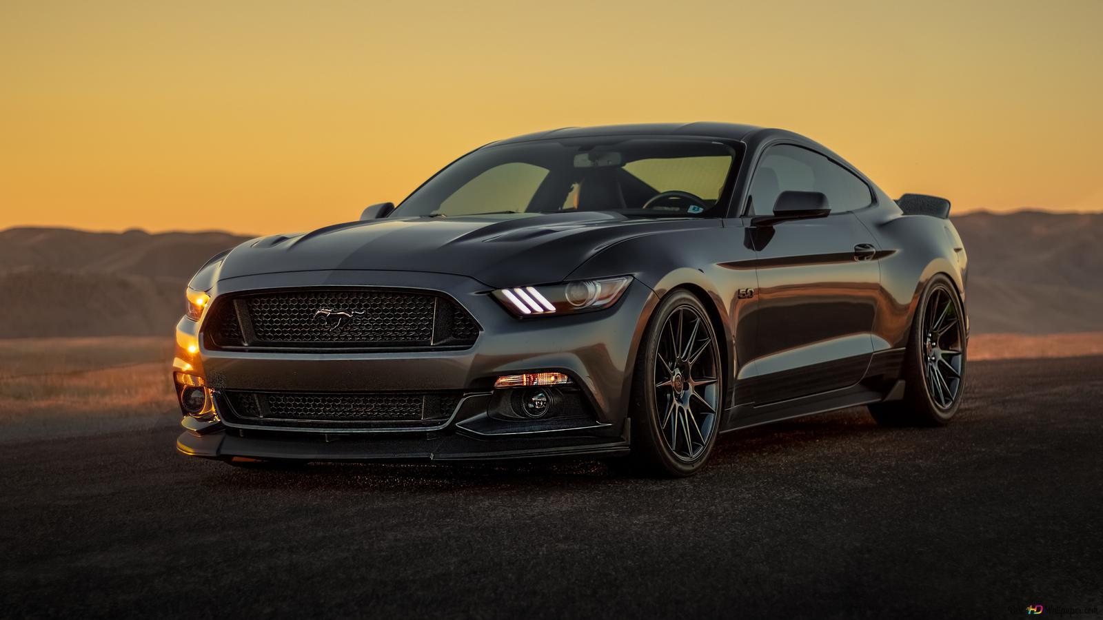 Preto Ford Mustang Carro Hd Wallpaper Download