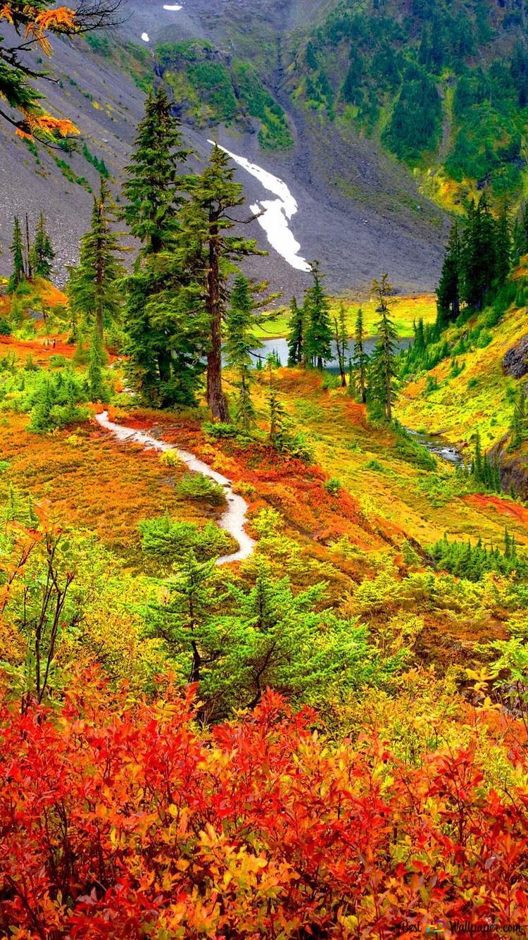 秋の山の森のトレイル Hd壁紙のダウンロード