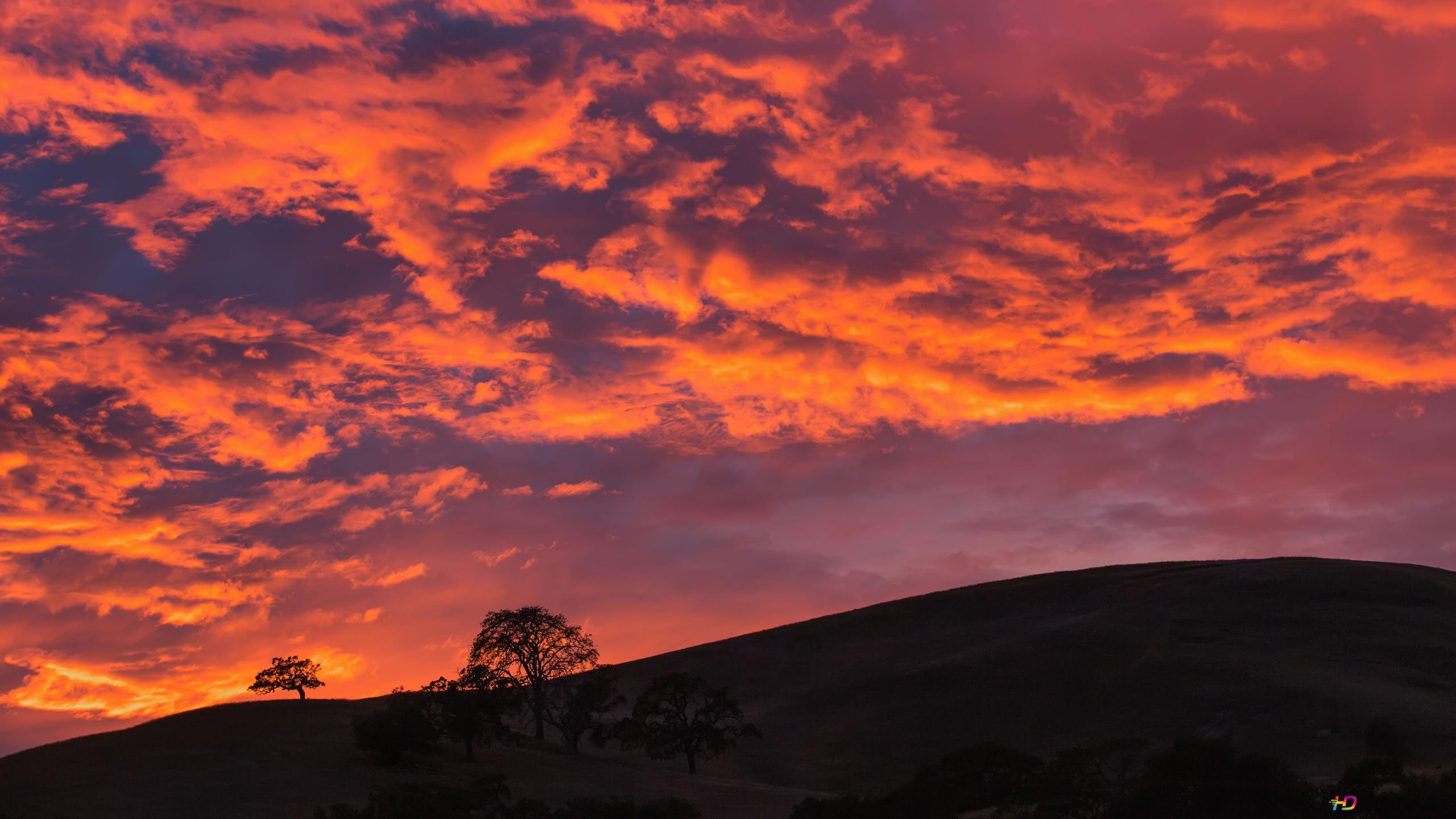 Red Cloud Sky Hd Wallpaper Download
