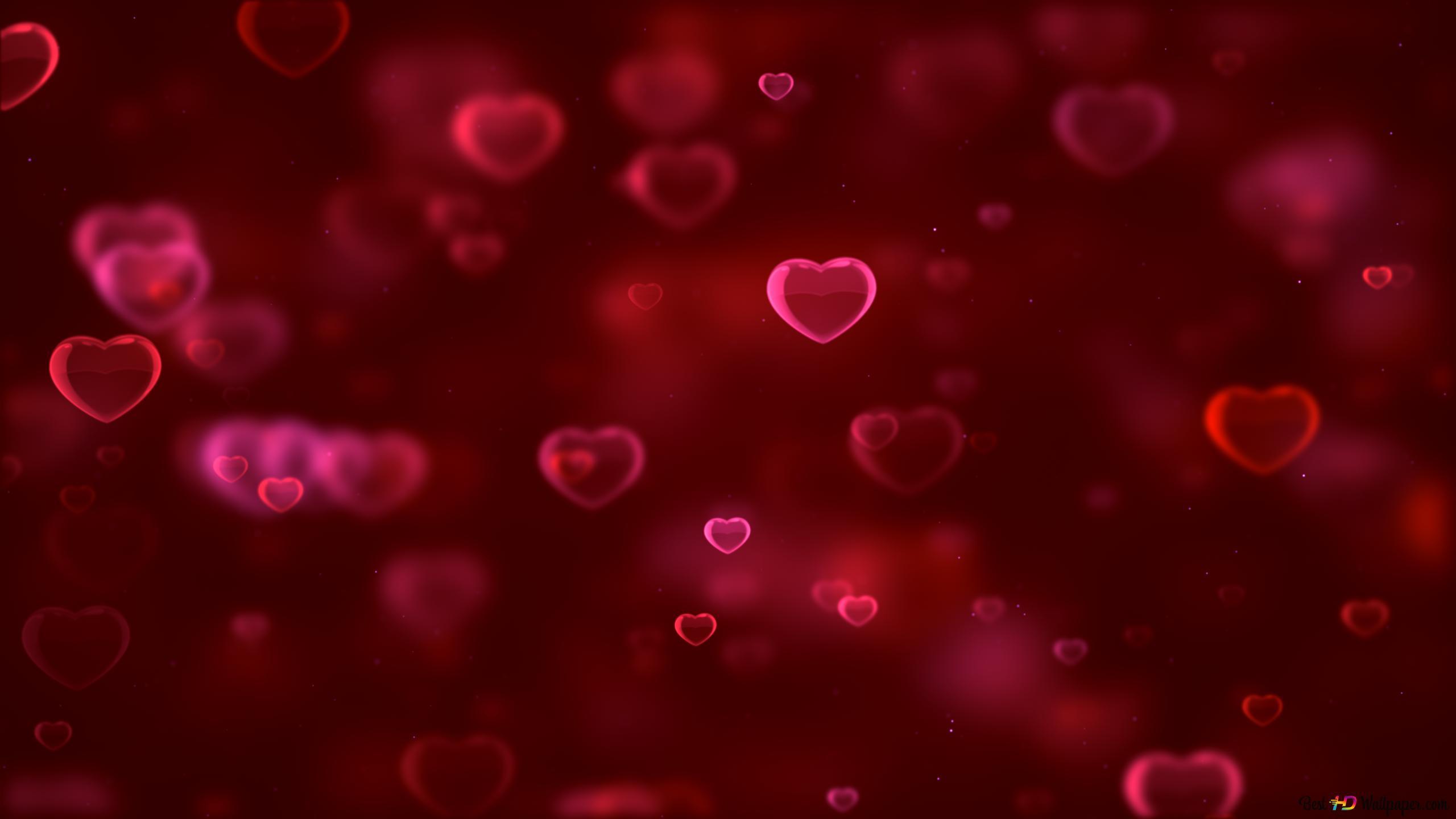 Saint Valentin Coeurs Rouges Bulles Hd Fond Décran
