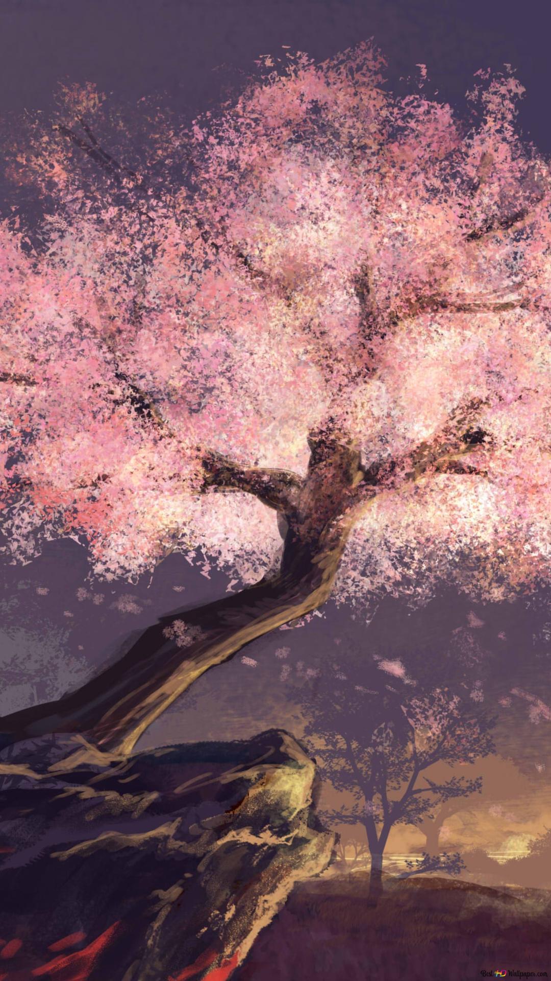 Anime Wallpaper Iphone Cherry Blossom Gambarku