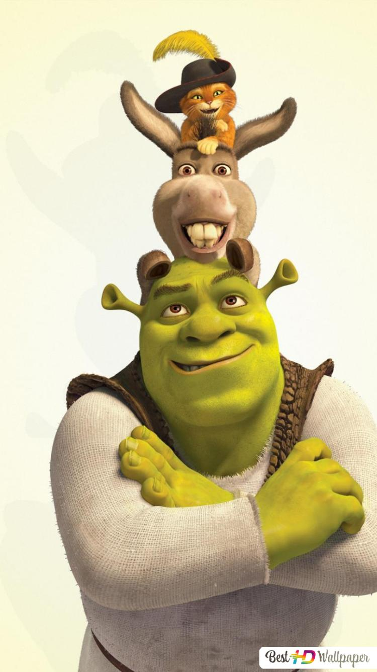shrek forever after characters wallpaper 750x1334 12748 164
