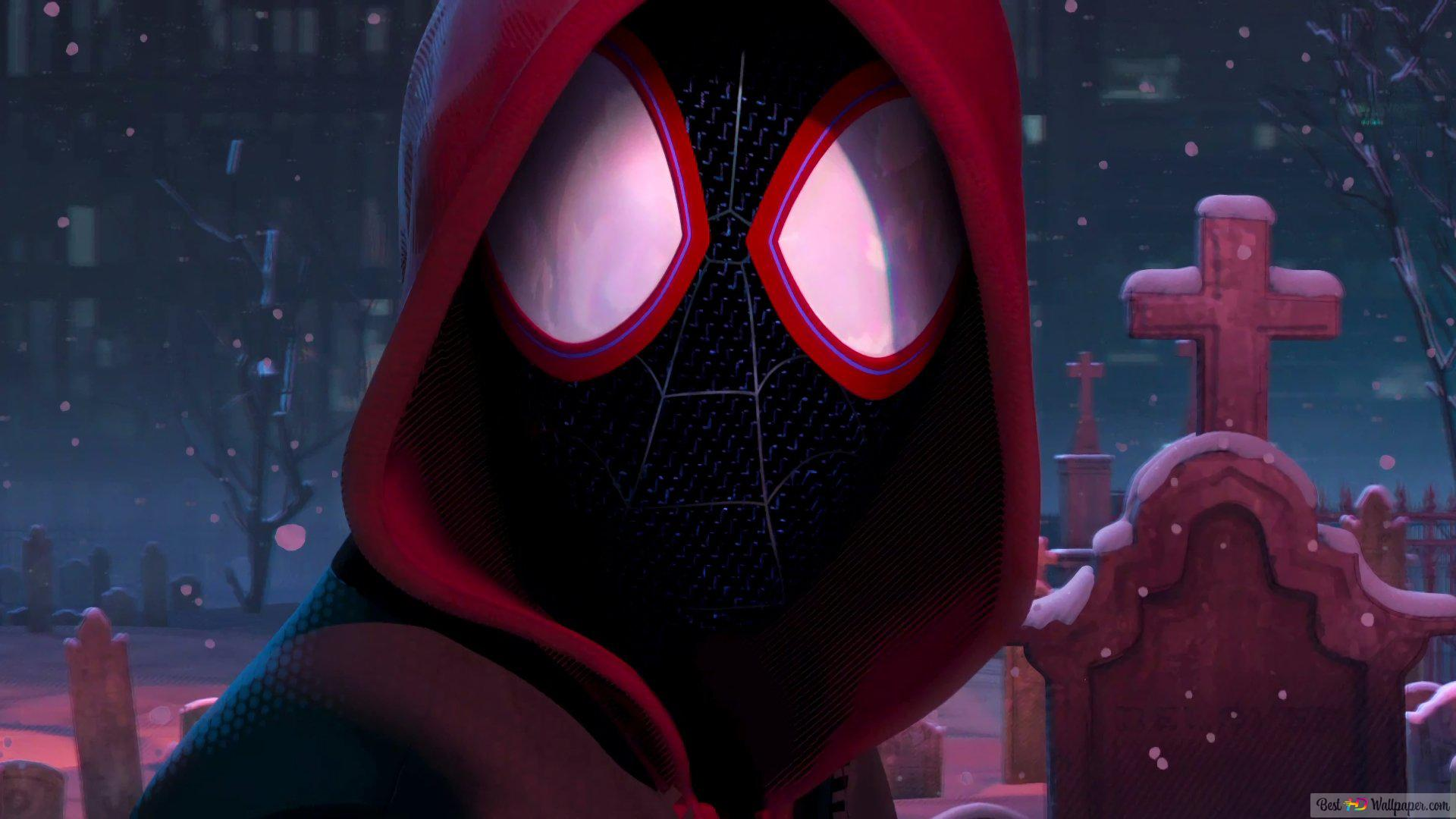 Spider Man Into The Spider Verse Animated Movie Hd Wallpaper Download