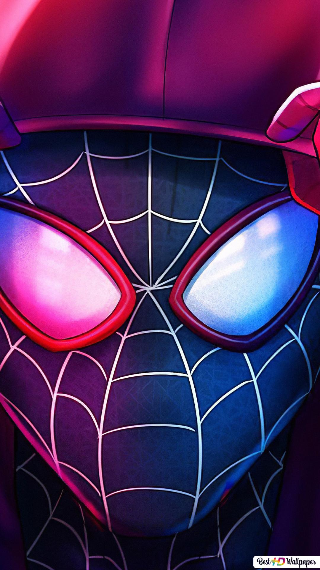 Spider Man Into The Spider Verse Miles Morales Hd Wallpaper