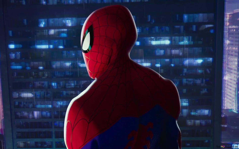 Spider Man Into The Spider Verse Hd Wallpaper Download