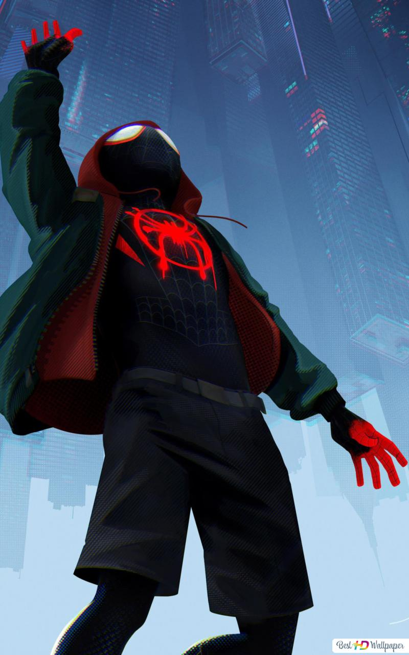 Spider Man Into The Spider Verse Hd Wallpaper Download