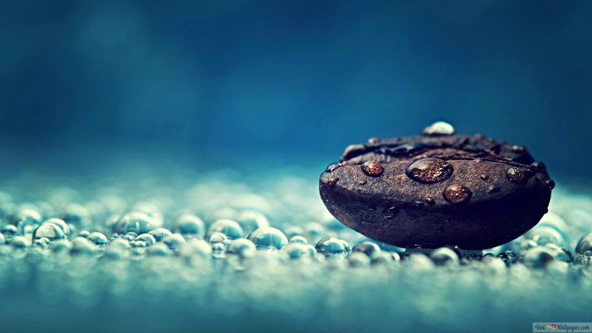 Stone And Water Drops Hd Wallpaper Download
