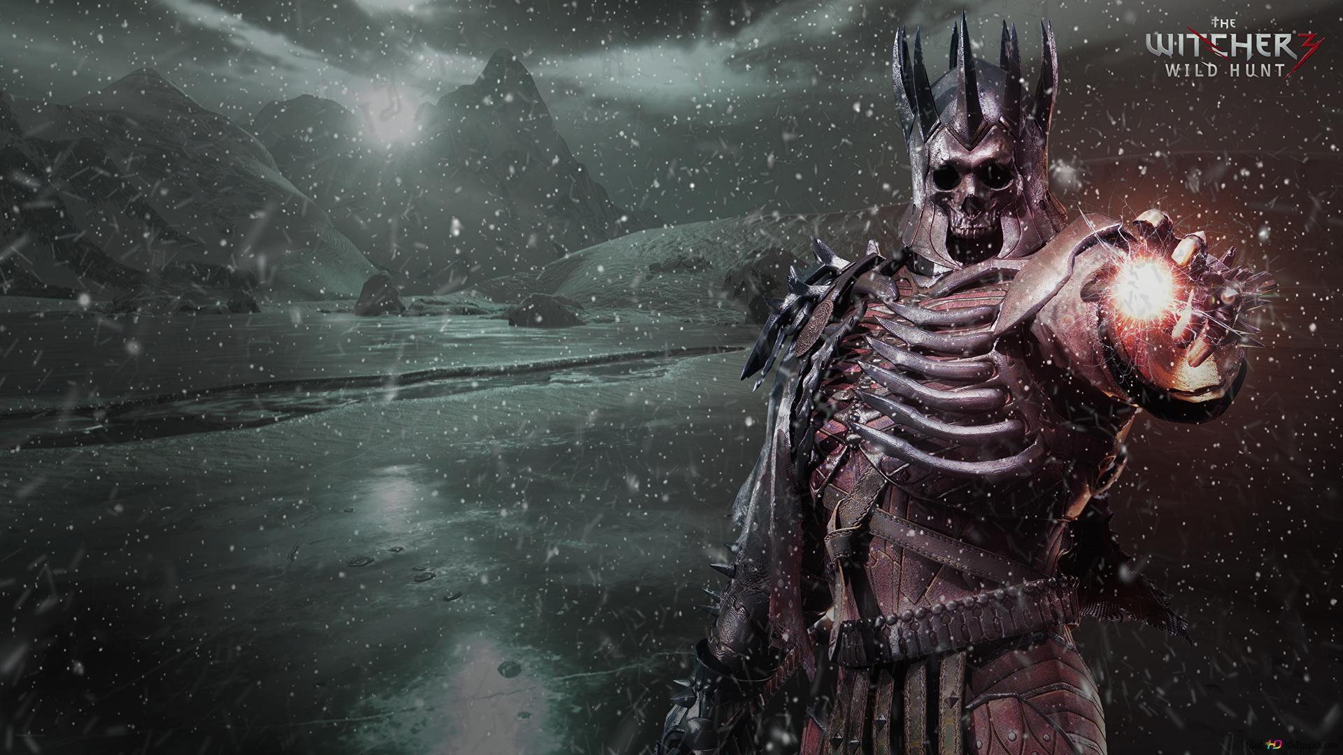 The Witcher 3 Wild Hunt Eredin Hd Wallpaper Download