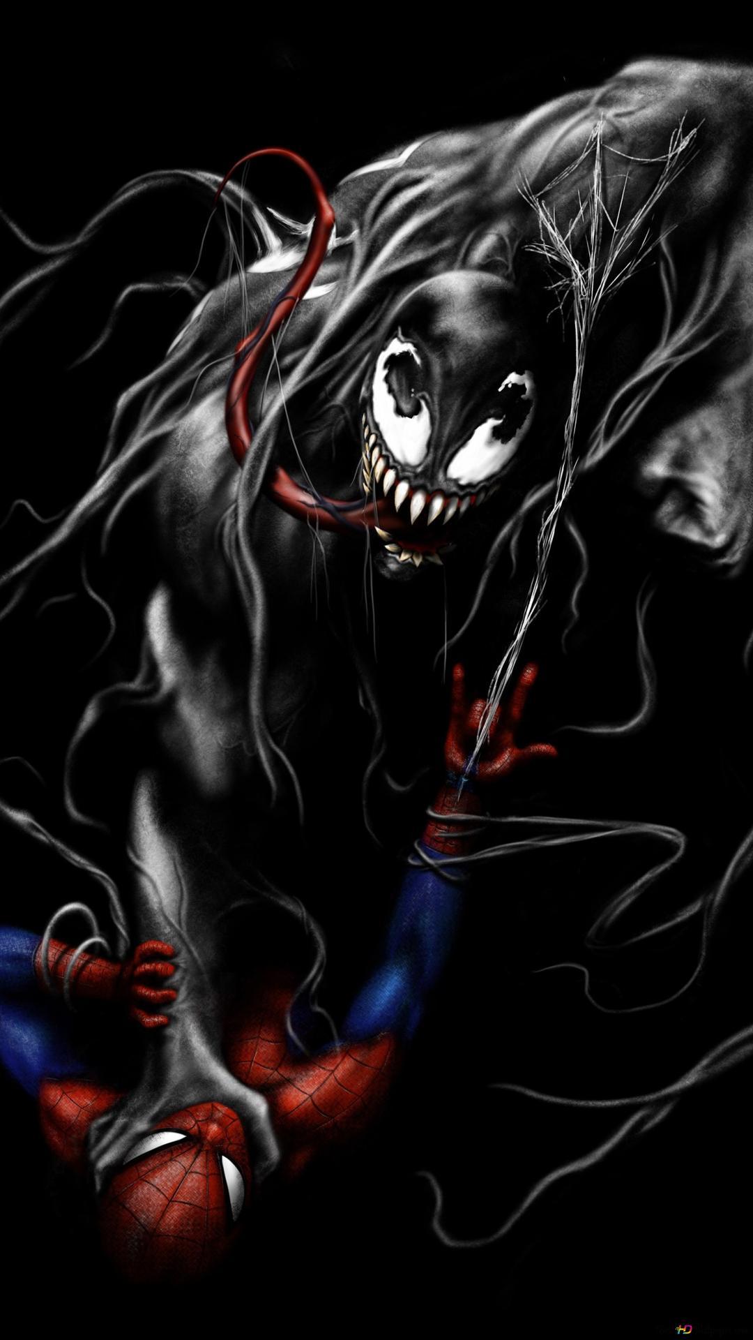 Venom Prendre Sur Spider Man Hd Fond D Ecran Telecharger